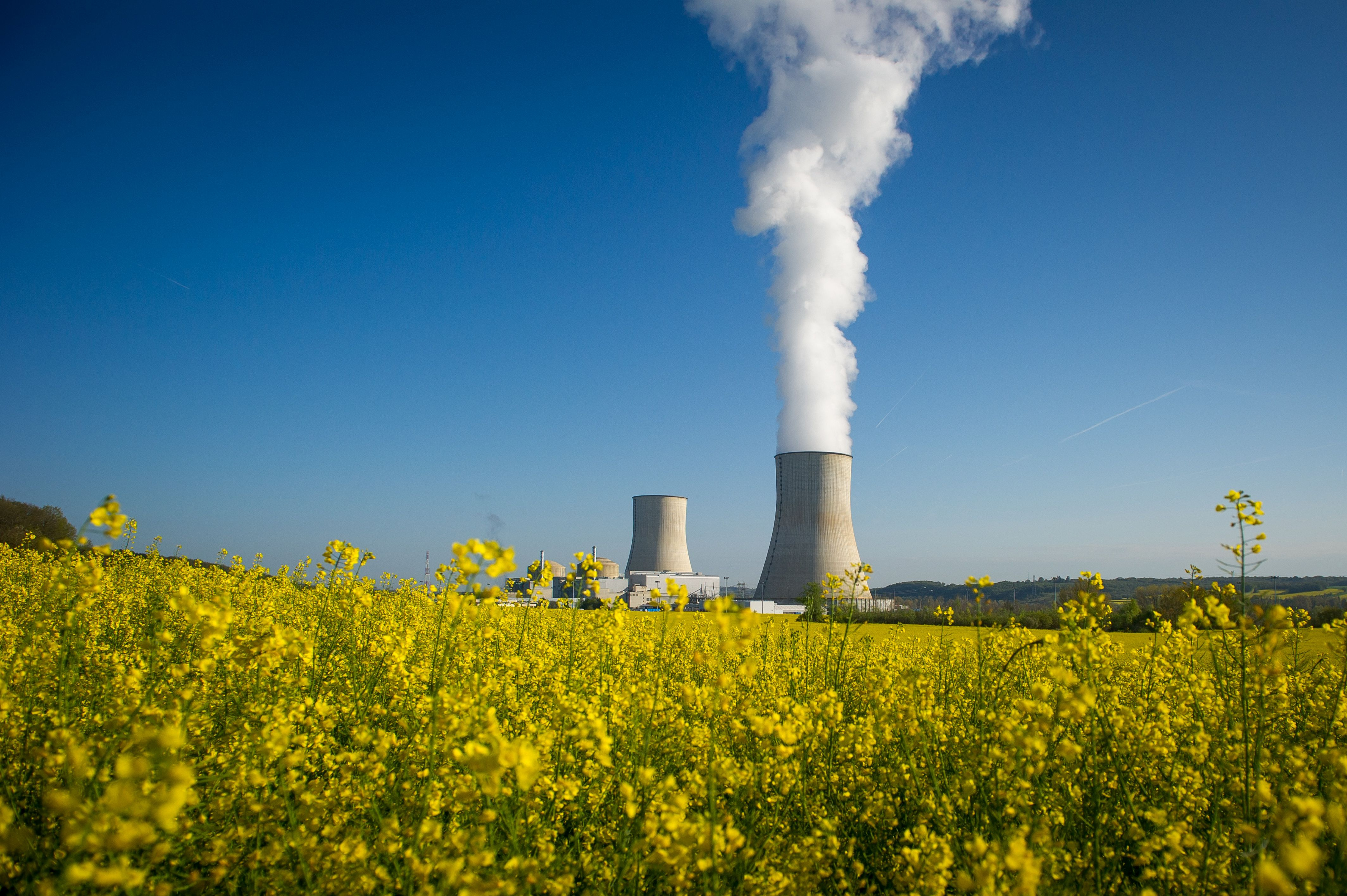 A picture taken on April 25, 2016, shows the two cooling towers of the nuclear power plant of Civaux, seen behind a colza field, in Civaux, central France.