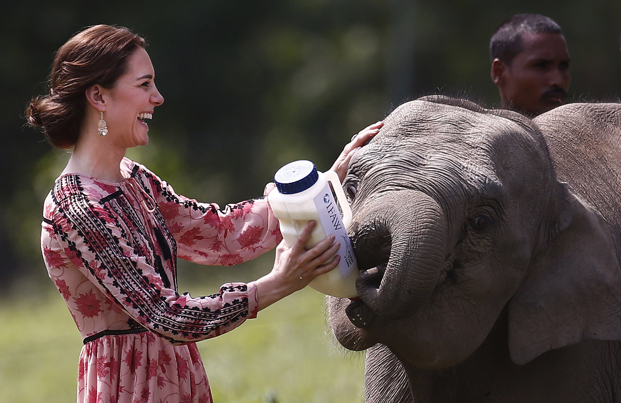 Kate, Duchess of Cambridge, feeds a baby elephant at the Centre for Wildlife Rehabilitation and Conservation at Panbari reserve forest in Kaziranga, in the north-eastern state of Assam, India on April 13, 2016.