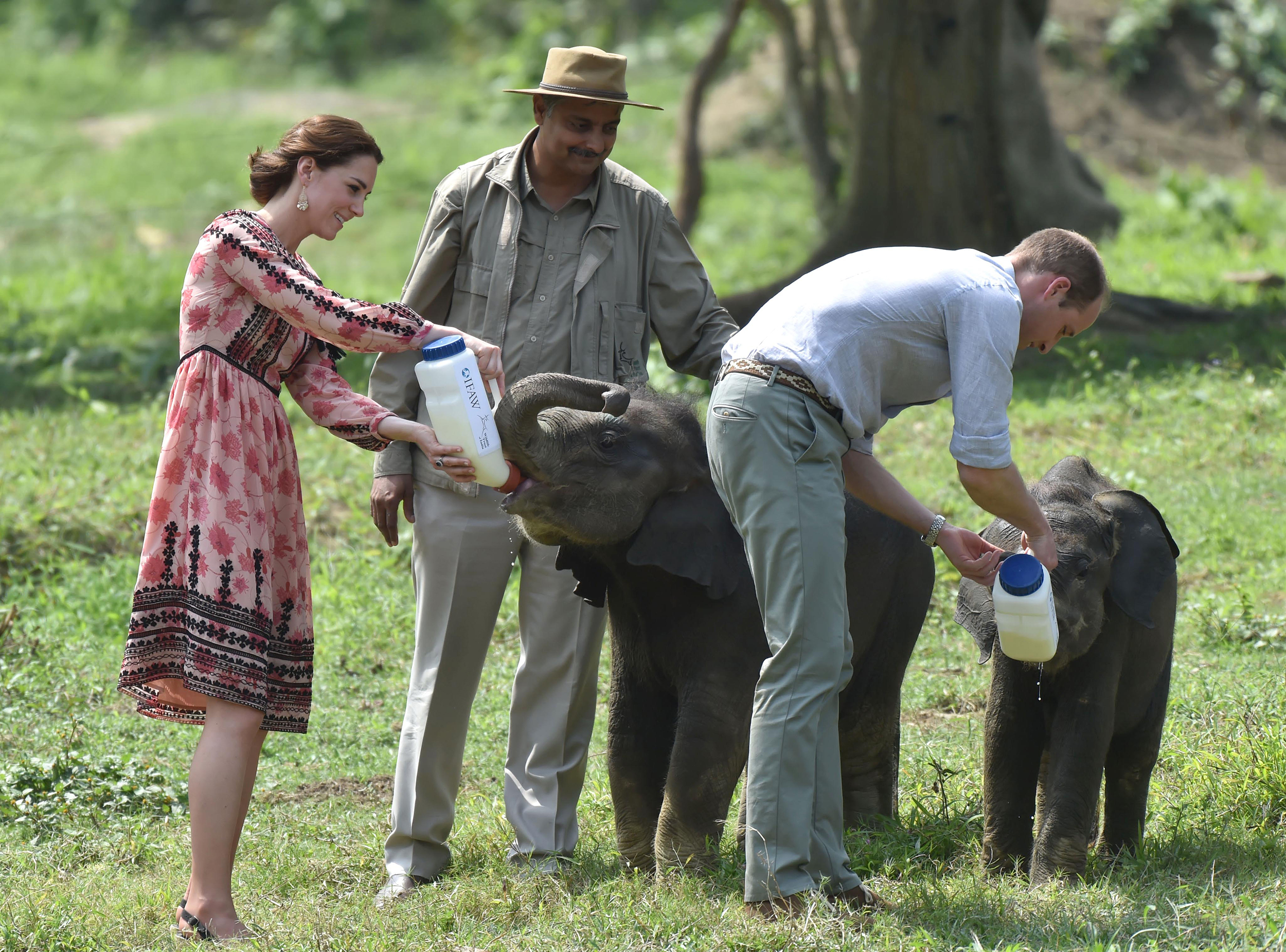 Catherine, Duchess of Cambridge and Prince William, Duke of Cambridge visit  the Centre for Wildlife Rehabilitation and Conservation at Kaziranga National Park  in Guwahati, India on April 13, 2016.