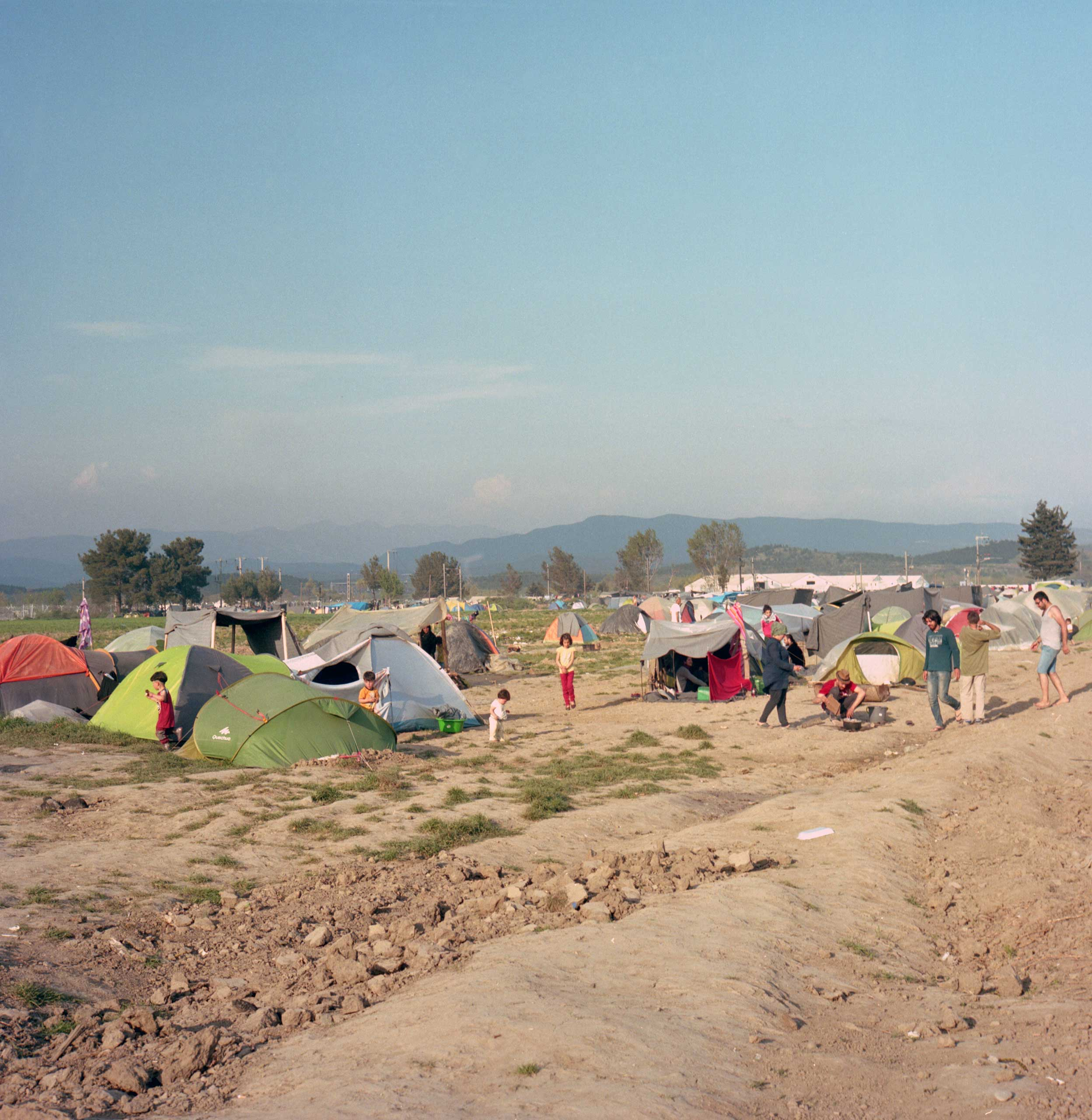 Refugee tents have spread on nearly 250 acres of Lazarous Oulis' farm land. He claims to have lost 20,000 Euros in revenues, for which he says he has not received any compensation. Idomeni, Greece. April, 2016.