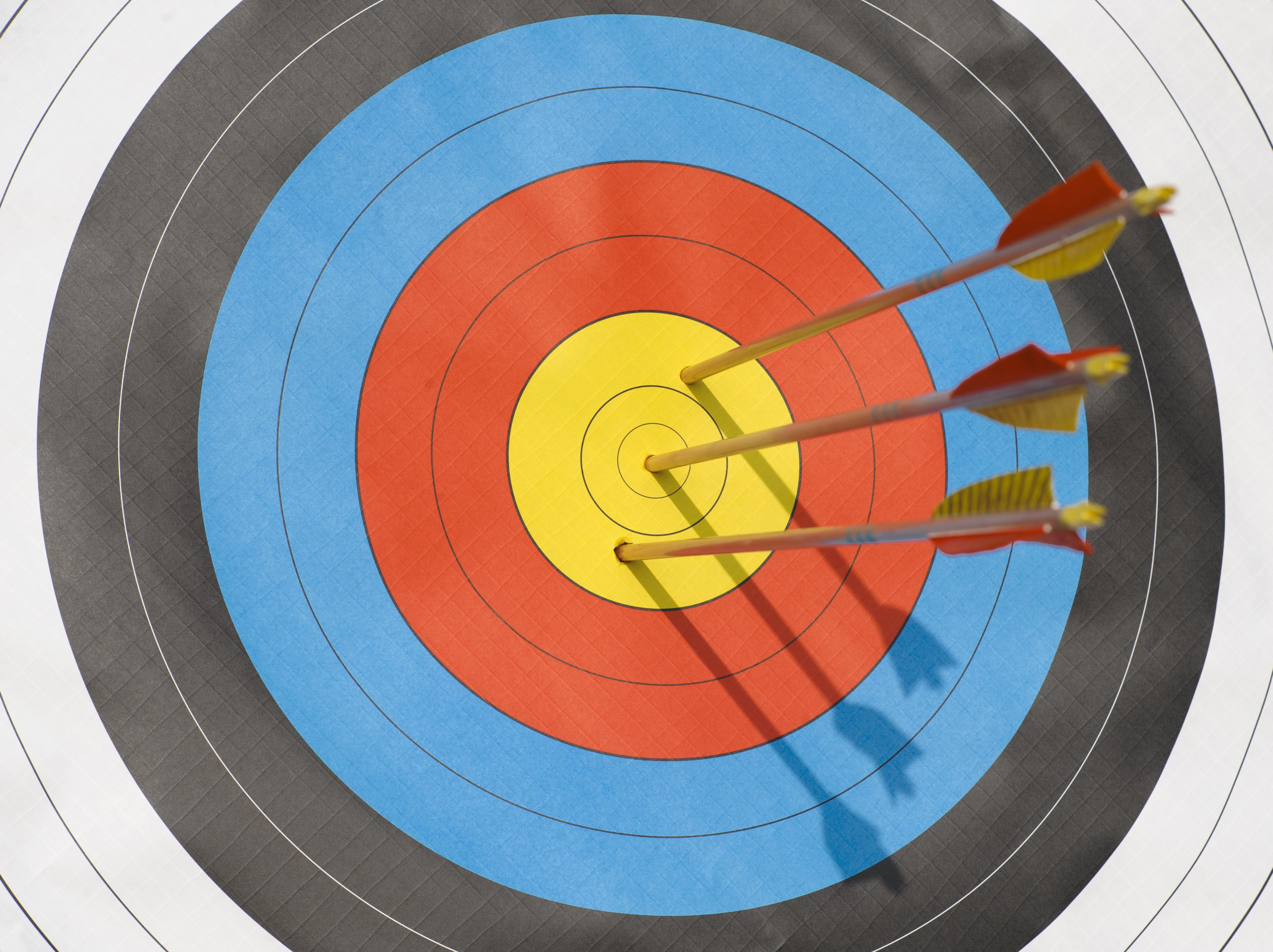 Arrows lodged in bull's-eye