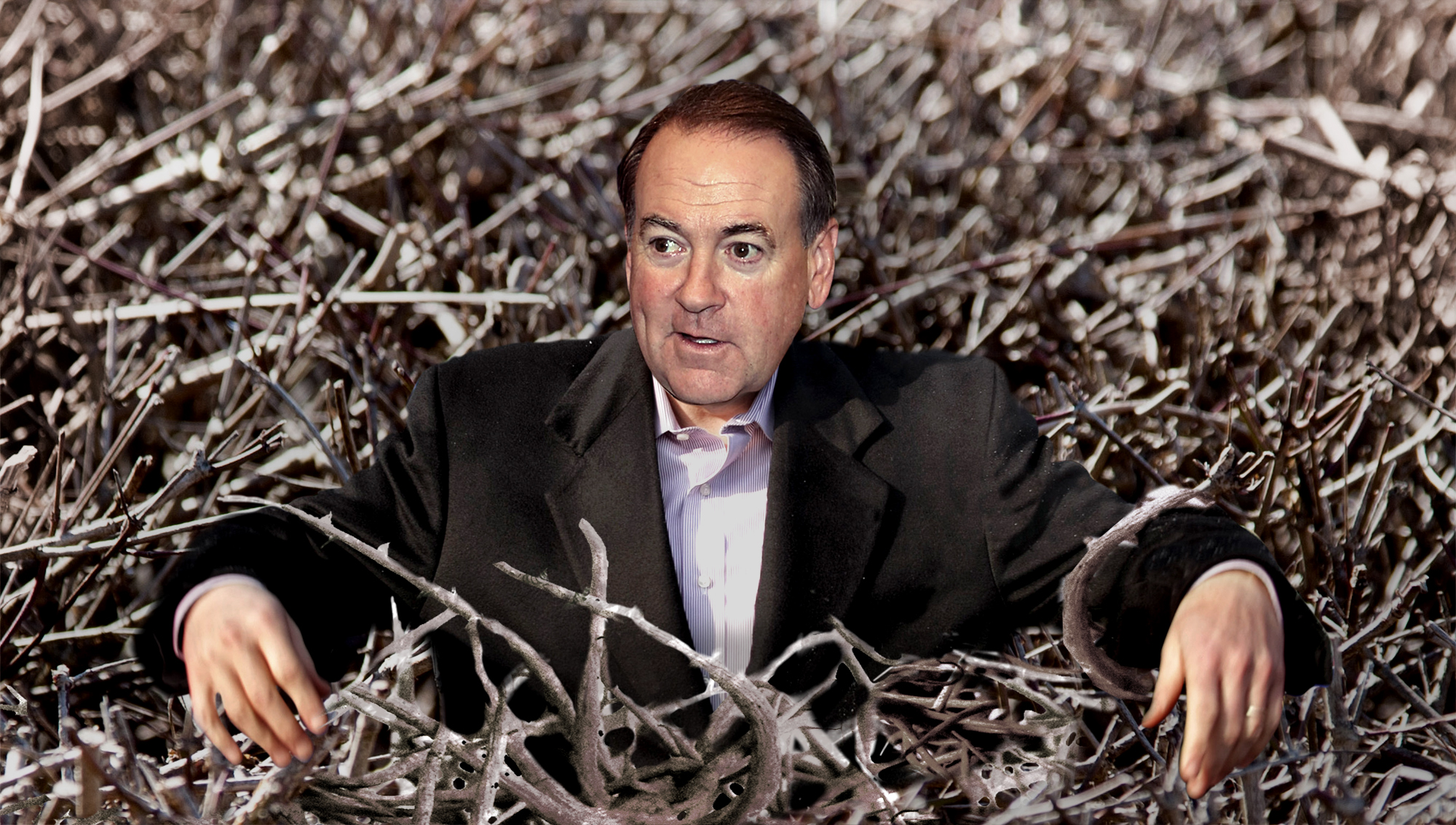 Huckabee Campaign Suspended After Candidate Trapped In Briar Patch                               August 14, 2015