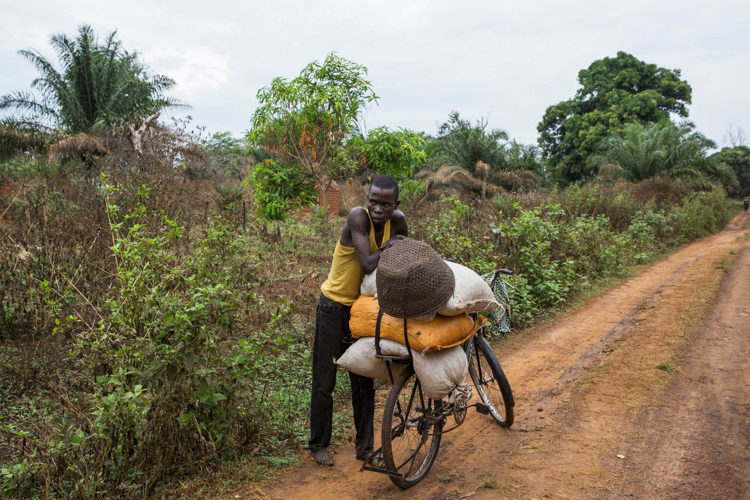 A man carries coffee on his bicycle to sell in Ngakaobo, Central African Republic.