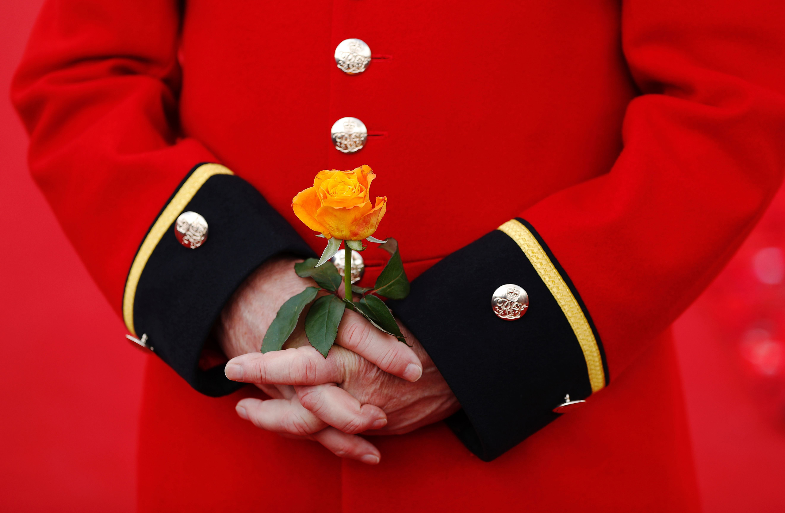 A Chelsea Pensioner holds a rose as he stands in the 5000 Poppies Garden at the Chelsea Flower Show in London on May 23, 2016.