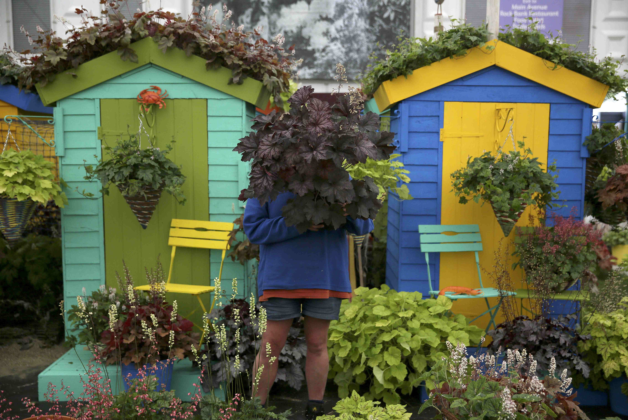 A woman works on a display during preparations for the RHS Chelsea Flower Show in London on May 21, 2016.