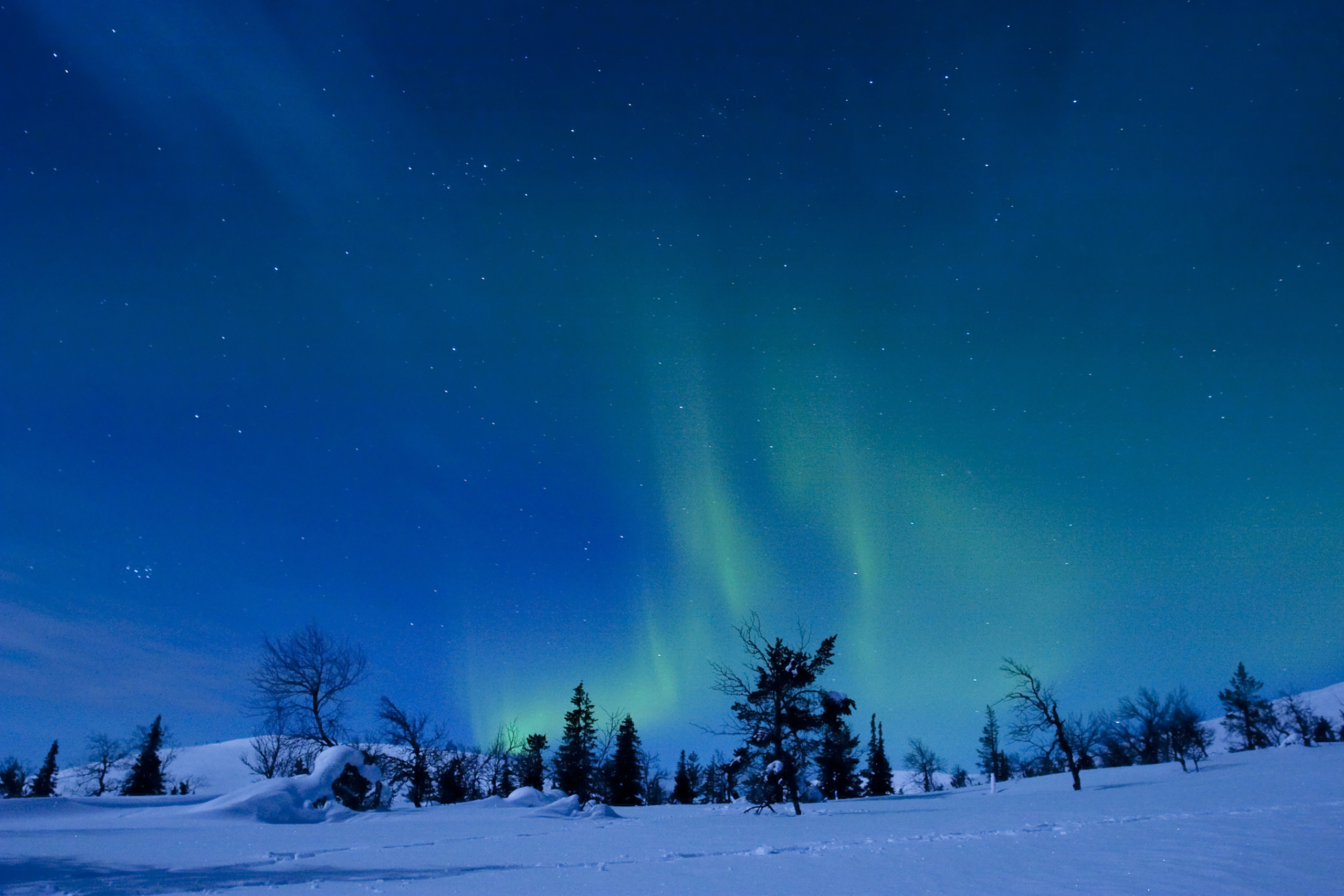 Pallas-Yllästunturi National Park, Finland. Located in the Lapland region of Finland, most of this park consists of primeval forests. It contains the Hetta-Pallas, Finalnd's oldest hiking trail. On dark nights, the northern lights can be seen.