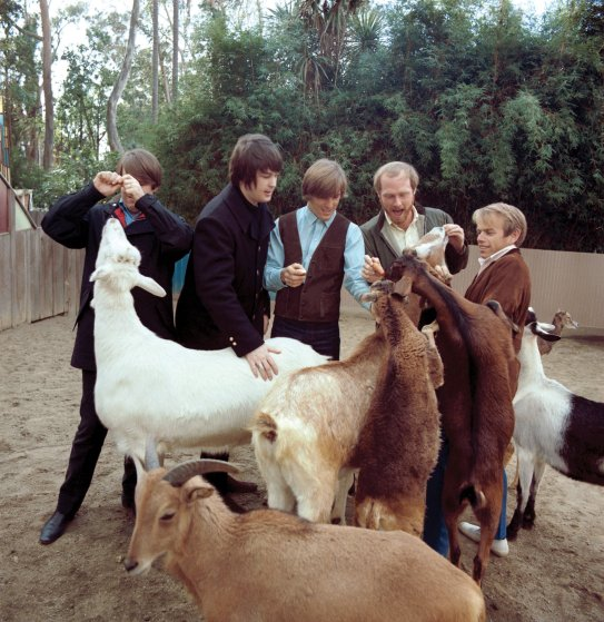 The Beach Boys' Pet Sounds photo shoot by George Jerman at San Diego Zoo, California, in February 1966.