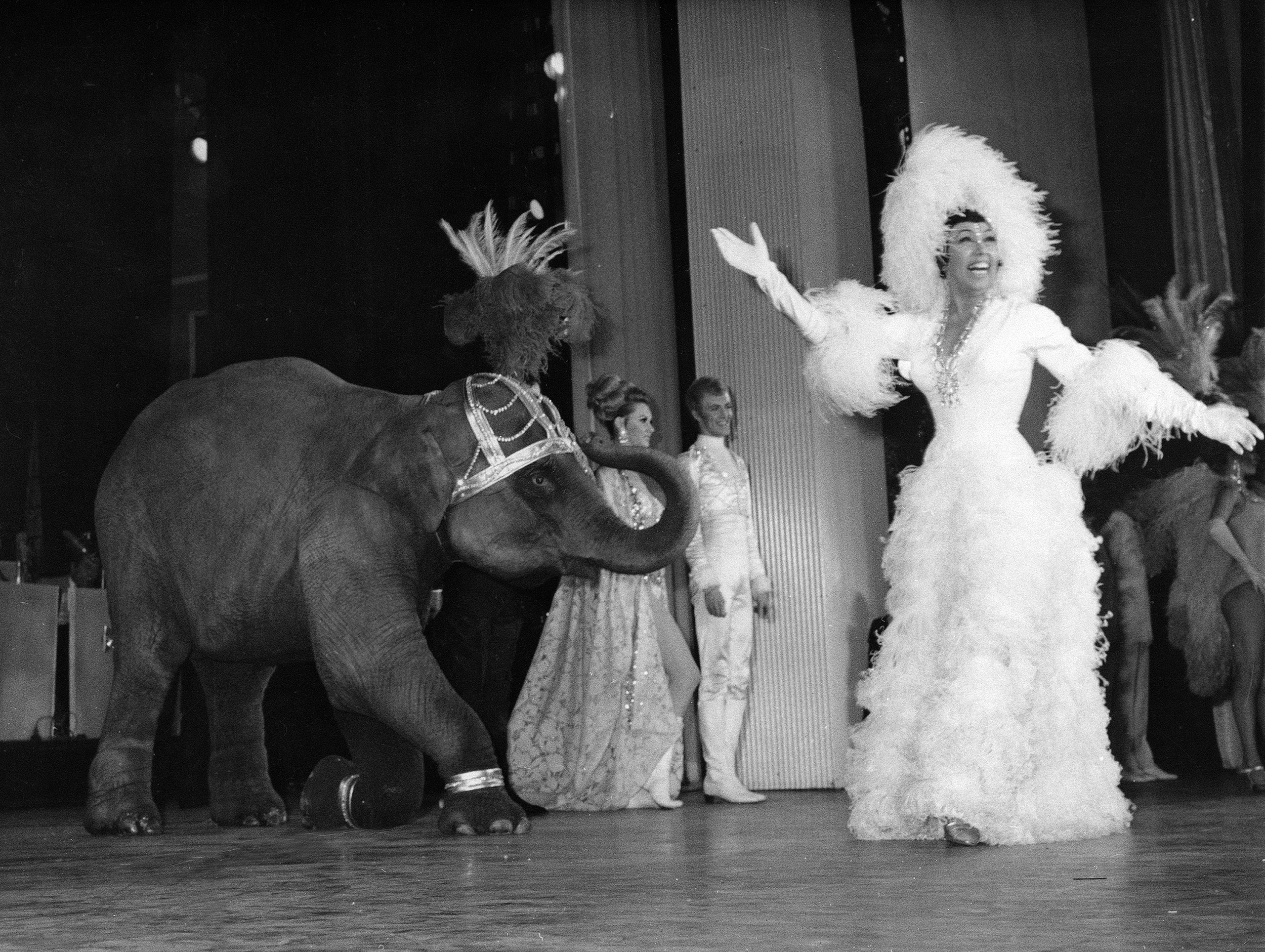 Josephine Baker appears with a young elephant on stage during her gala premiere at the Olympia Theatre in Paris, April 4, 1968.