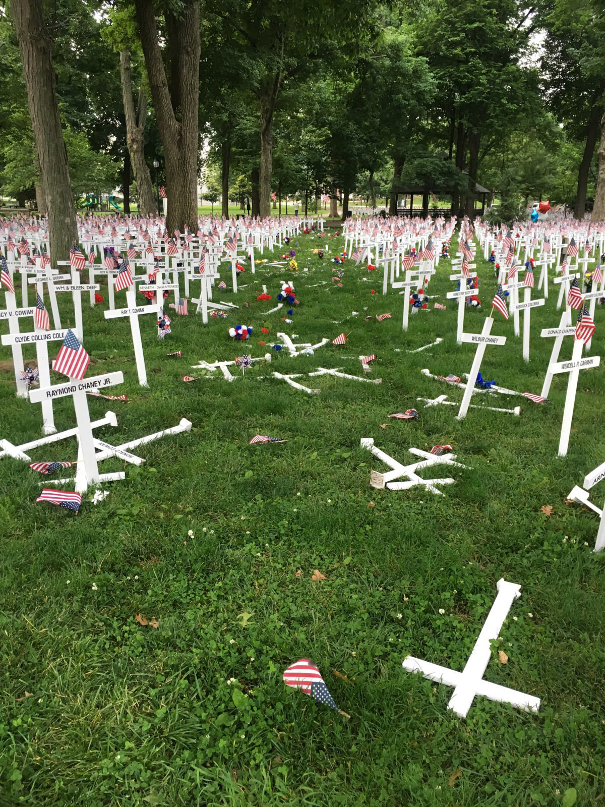 A Memorial Day display of crosses after a vehicle drove through them in Henderson, Ky.'s Central Park on May 28, 2016.