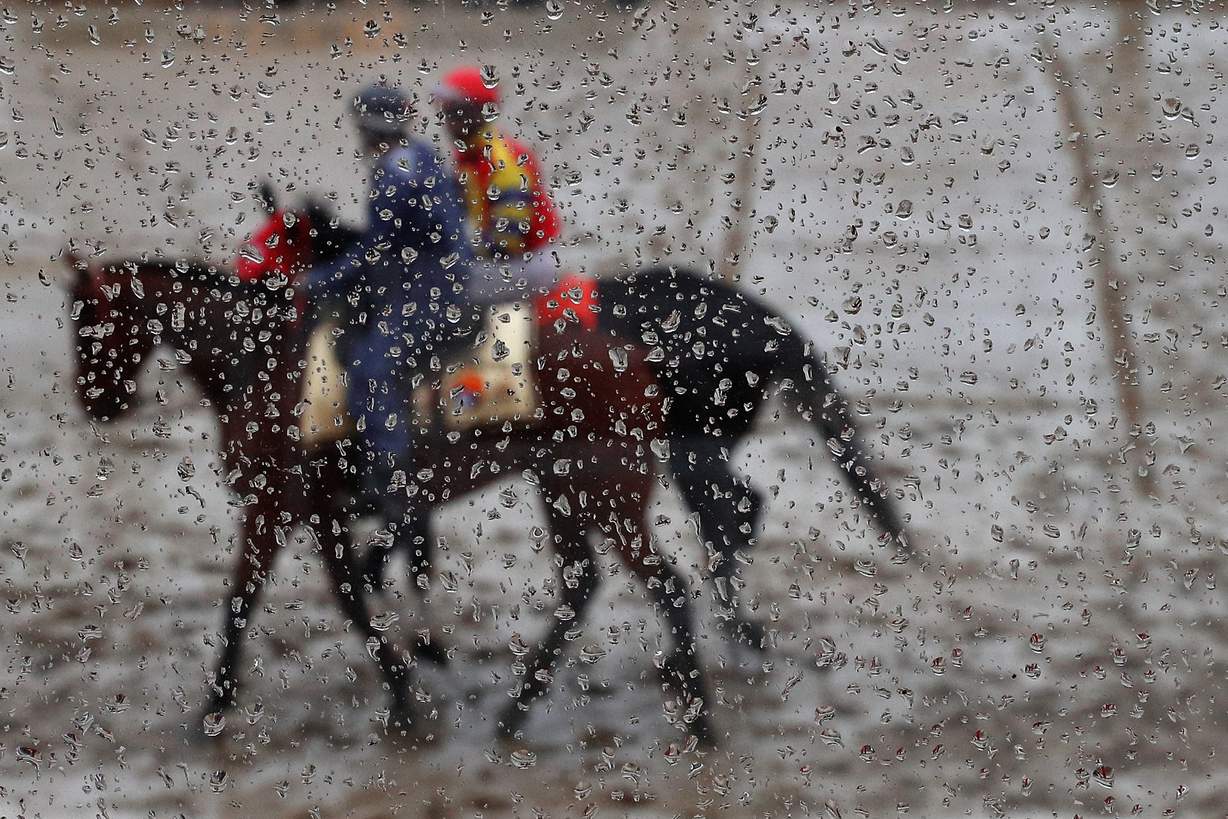 Horses are paraded before a race prior to the 141st Preakness Stakes horse race at Pimlico Race Course in Baltimore, Md., on May 21, 2016.