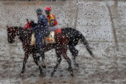 BALTIMORE, MD - MAY 21: Horses are paraded before a race prior to the 141st running of the Preakness Stakes at Pimlico Race Course on May 21, 2016 in Baltimore, Maryland. (Photo by Patrick Smith/Getty Images)
