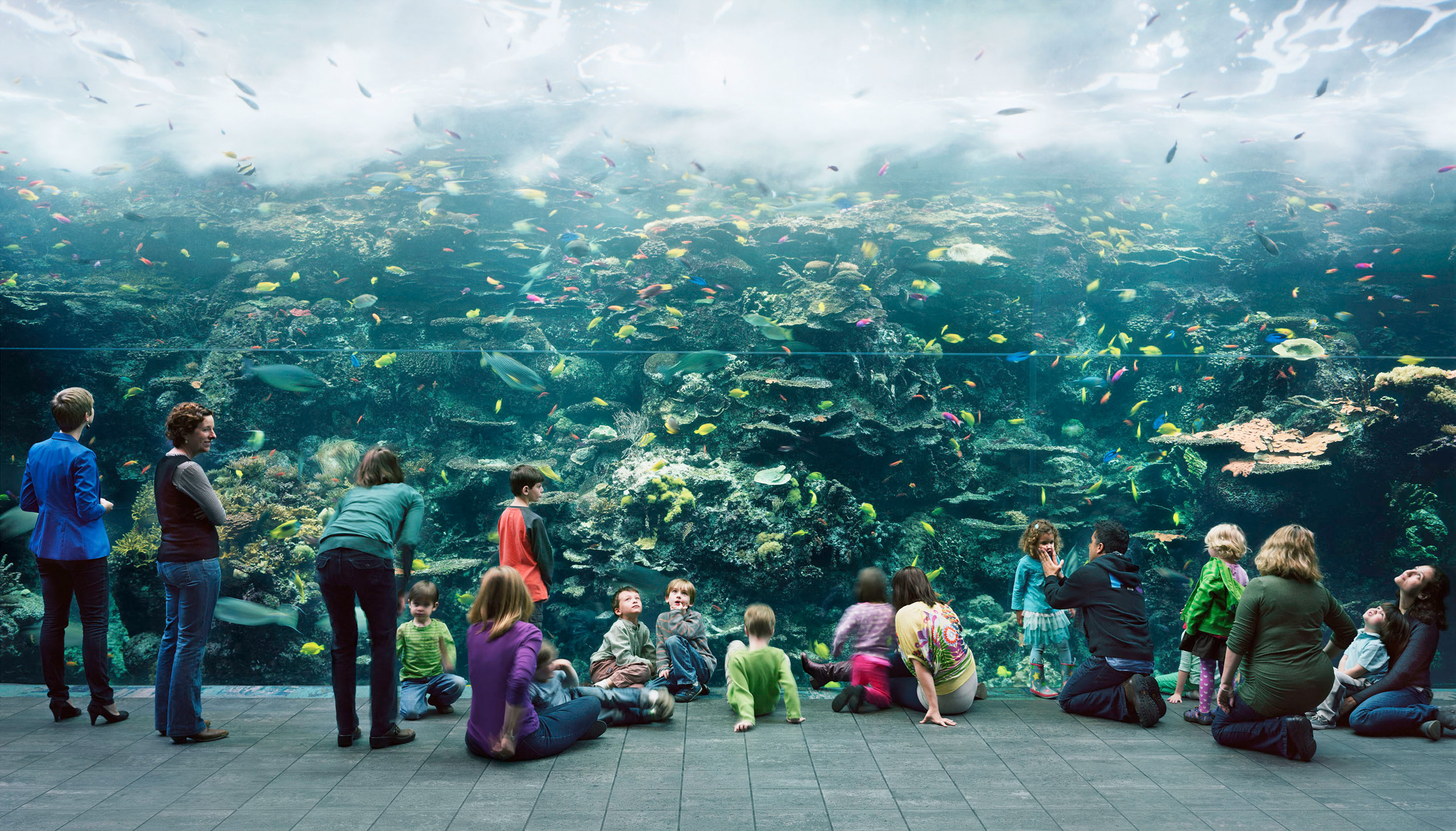 Thomas Struth (German, born 1954), Aquarium, Atlanta, Georgia, 2013, chromogenic print, 81.7 x 140.5 inches. High Museum of Art, Atlanta, purchase with funds from the Donald and Marilyn Keough Family, the Hagedorn Family, Lucinda W. Bunnen for the Bunnen Collection, and through prior acquisitions, 2014.23.