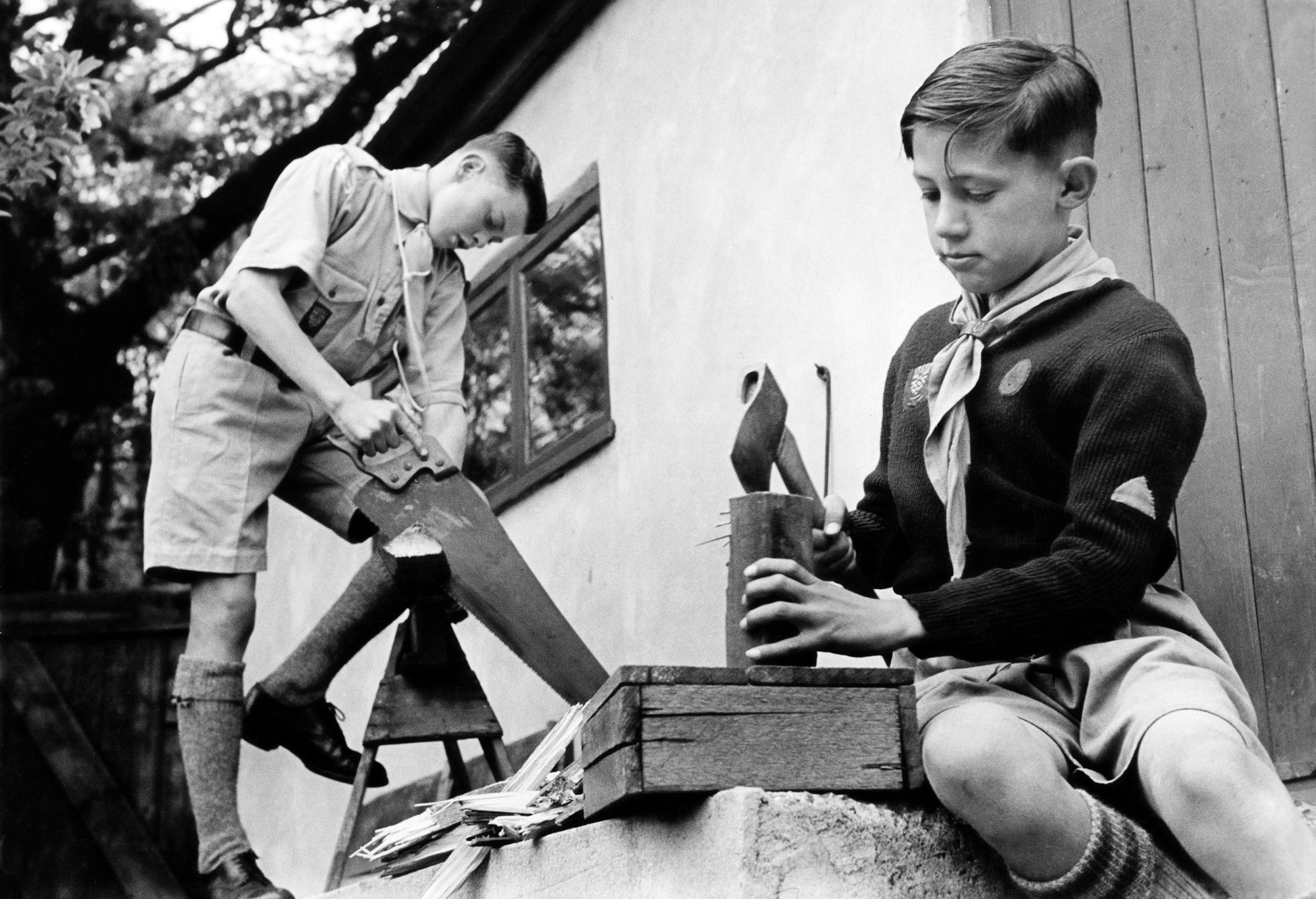 Boy scouts of the 7th Royal Eltham Troop earning money for the Boy Scout Association by chopping firewood, 1949.