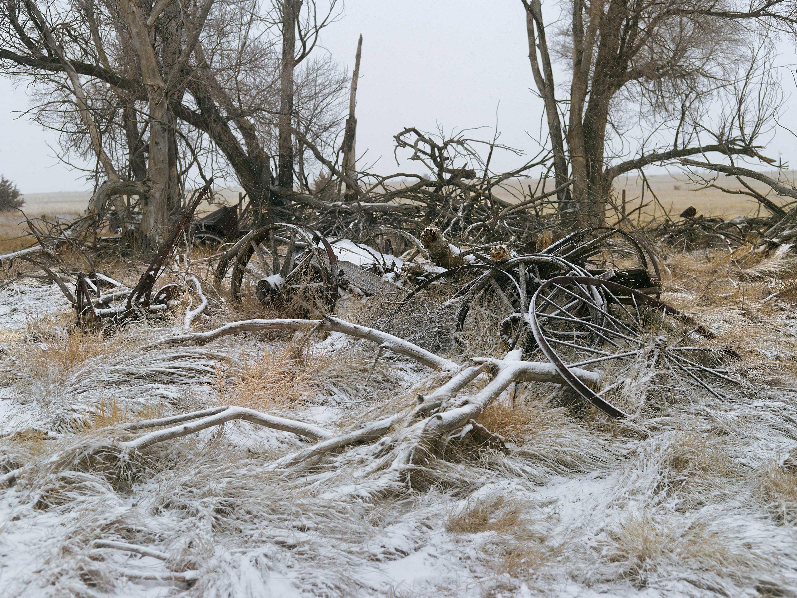 Buckboard Wagon. Sheridan County, Nebraska, 2013.