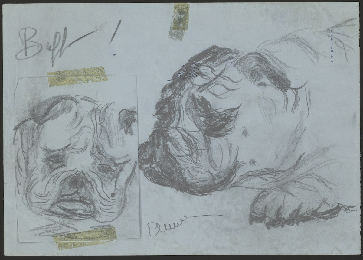 Ana Magnani (Italian, 1908-1973). Buffo!, ca. 1950s. Pencil on paper. 8 1/4 x 11 1/2 inches; 5 5/16 x 4 inches.