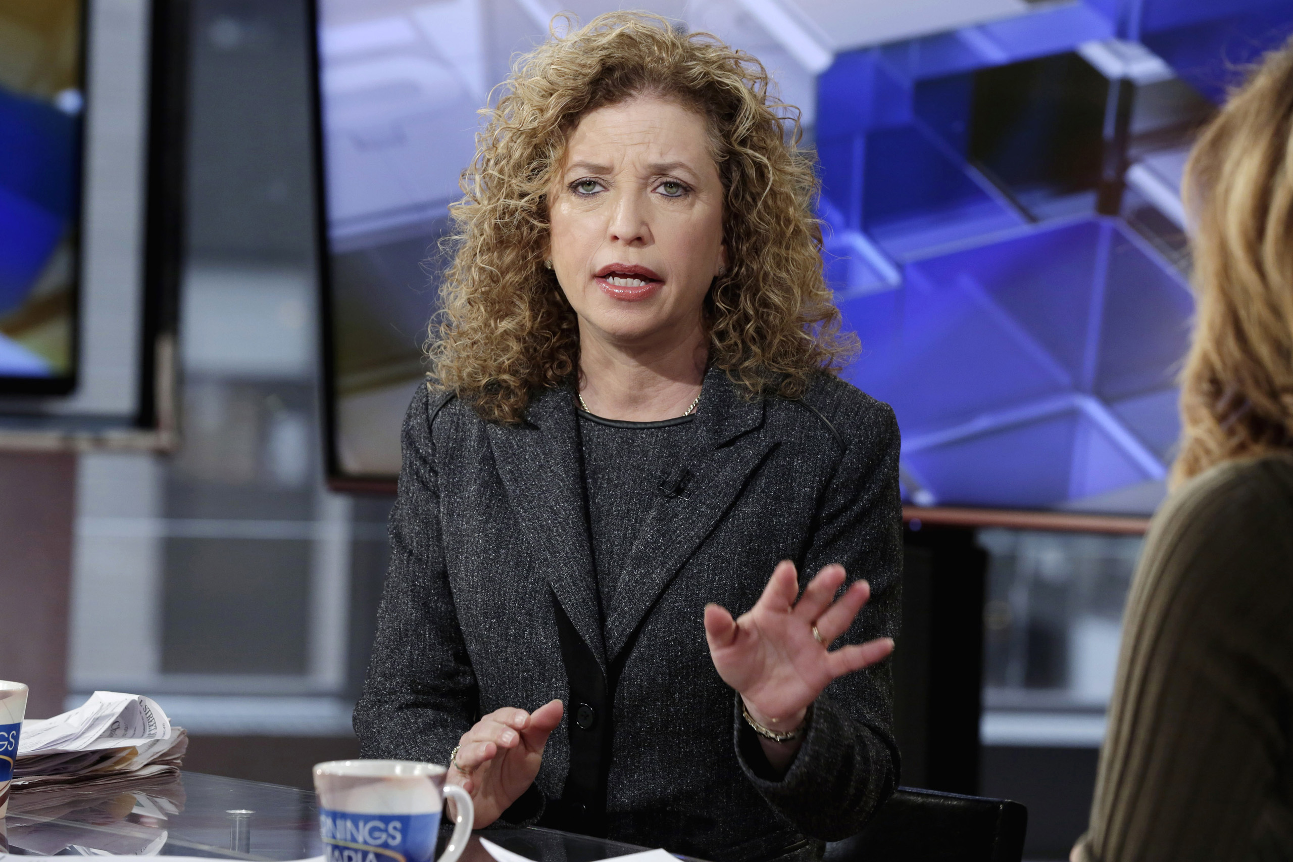 Democratic National Committee Chair, Rep Debbie Wasserman Schultz, D-Fla., is interviewed in New York.