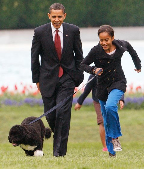 April 14, 2009 Malia walks their new dog Bo with President Barack Obama on the South Lawn of the White House in Washington.