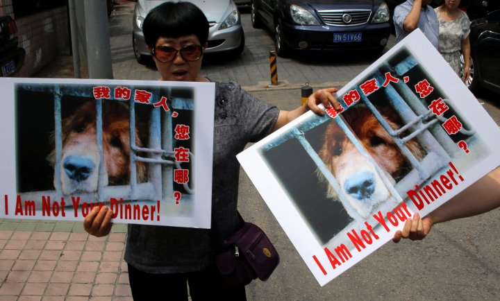 Animal activists hold banners against Yulin Dog Meat Festival in front of Yulin City Representative office in Beijing