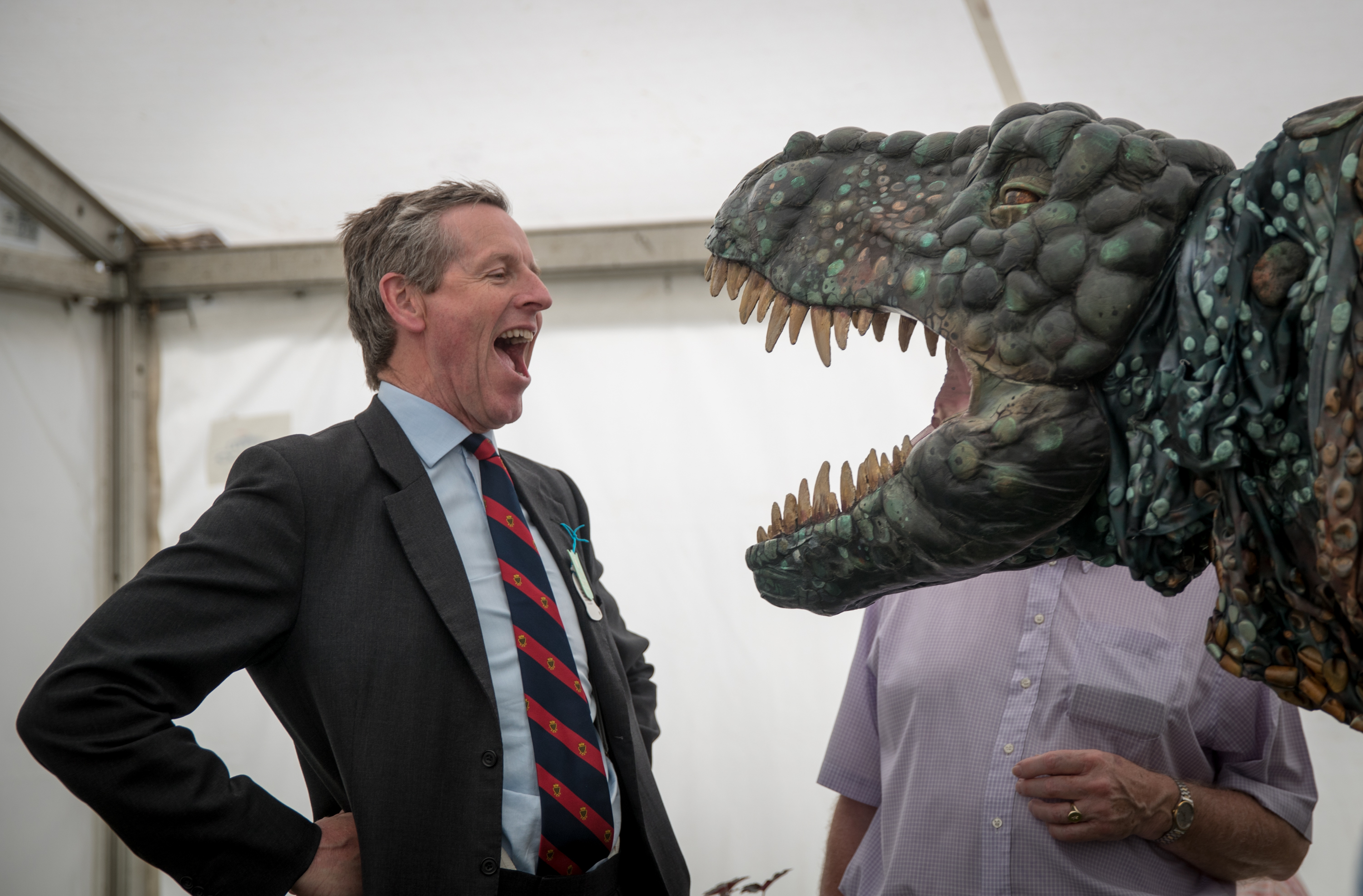 A man reacts to the Eden Project's life-size juvenile Tyrannosaurus rex that has been brought as a preview to the nearby attraction's  Dinosaur Uprising  opening this summer on June 9, 2016 near Wadebridge, England.
