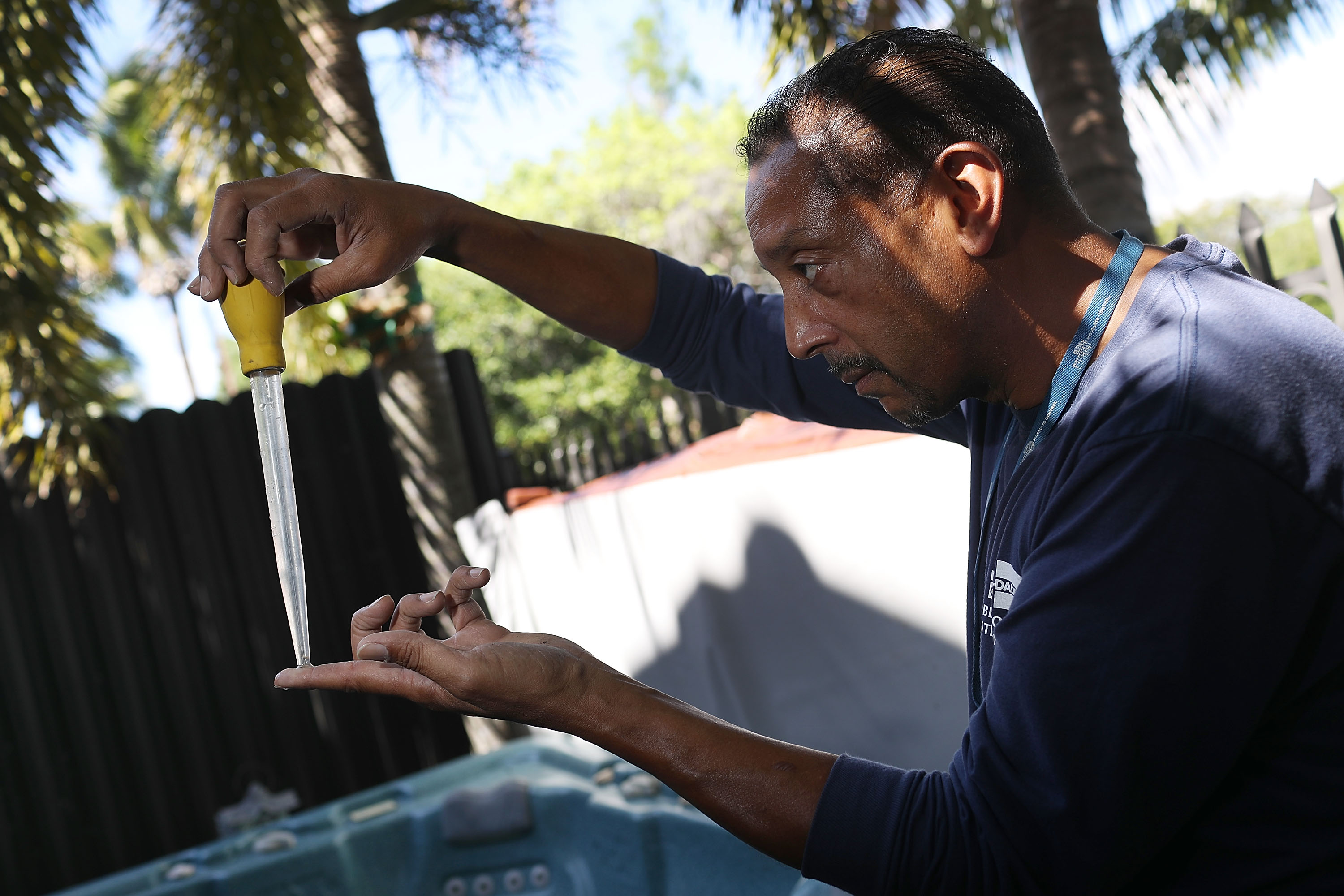 Larry Smart, a Miami-Dade County mosquito control inspector, looks at a mosquito larva in a sample of water taken from standing water before using a pesticide to eradicate the larva as the county continues to be proactive in fighting a possible Zika virus outbreak on May 26, 2016.