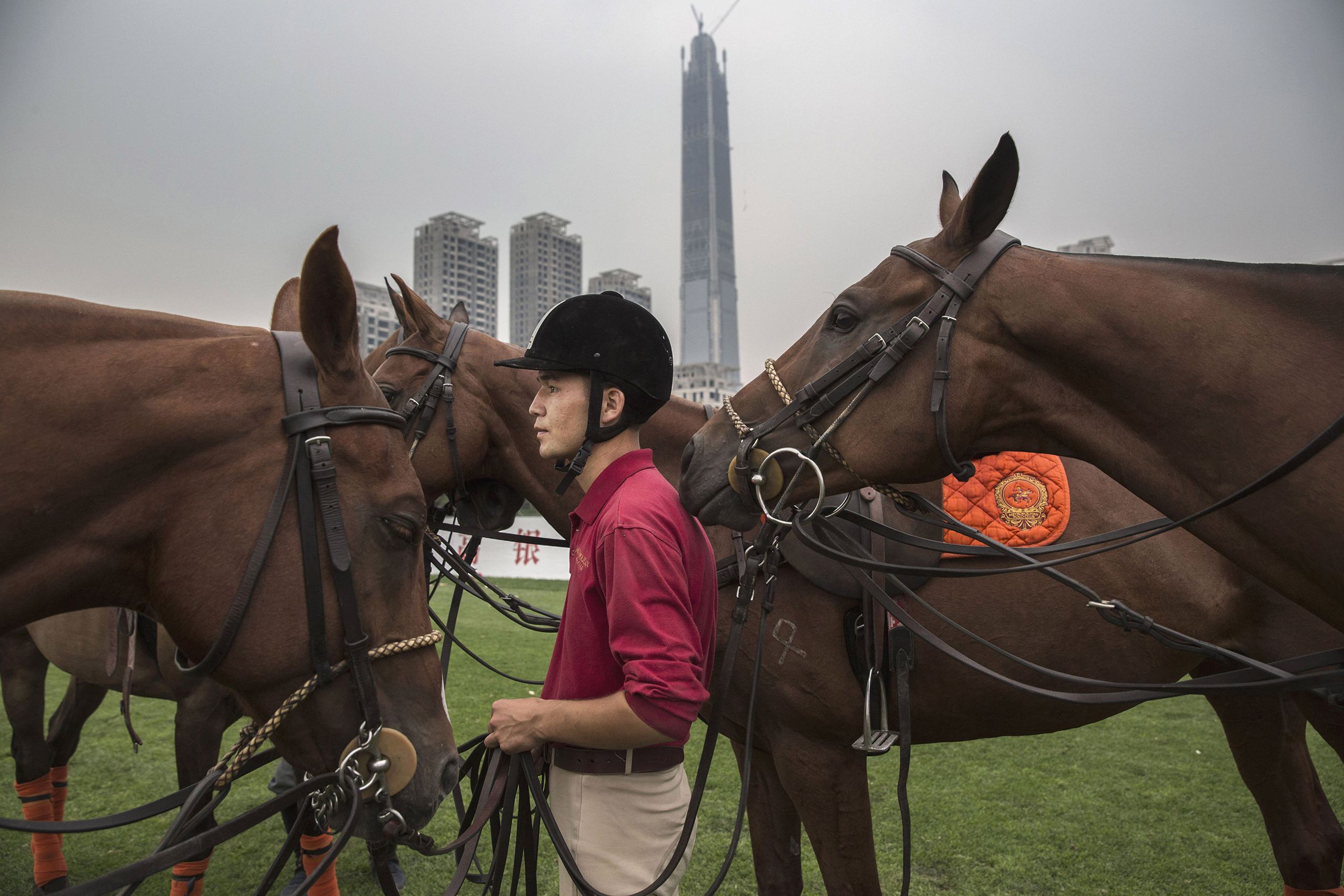 A horse trainer stands with polo horses during an intervarsity tournament match at the Tianjin Goldin Metropolitan Polo Club in Tianjin, China, on July 16, 2016.