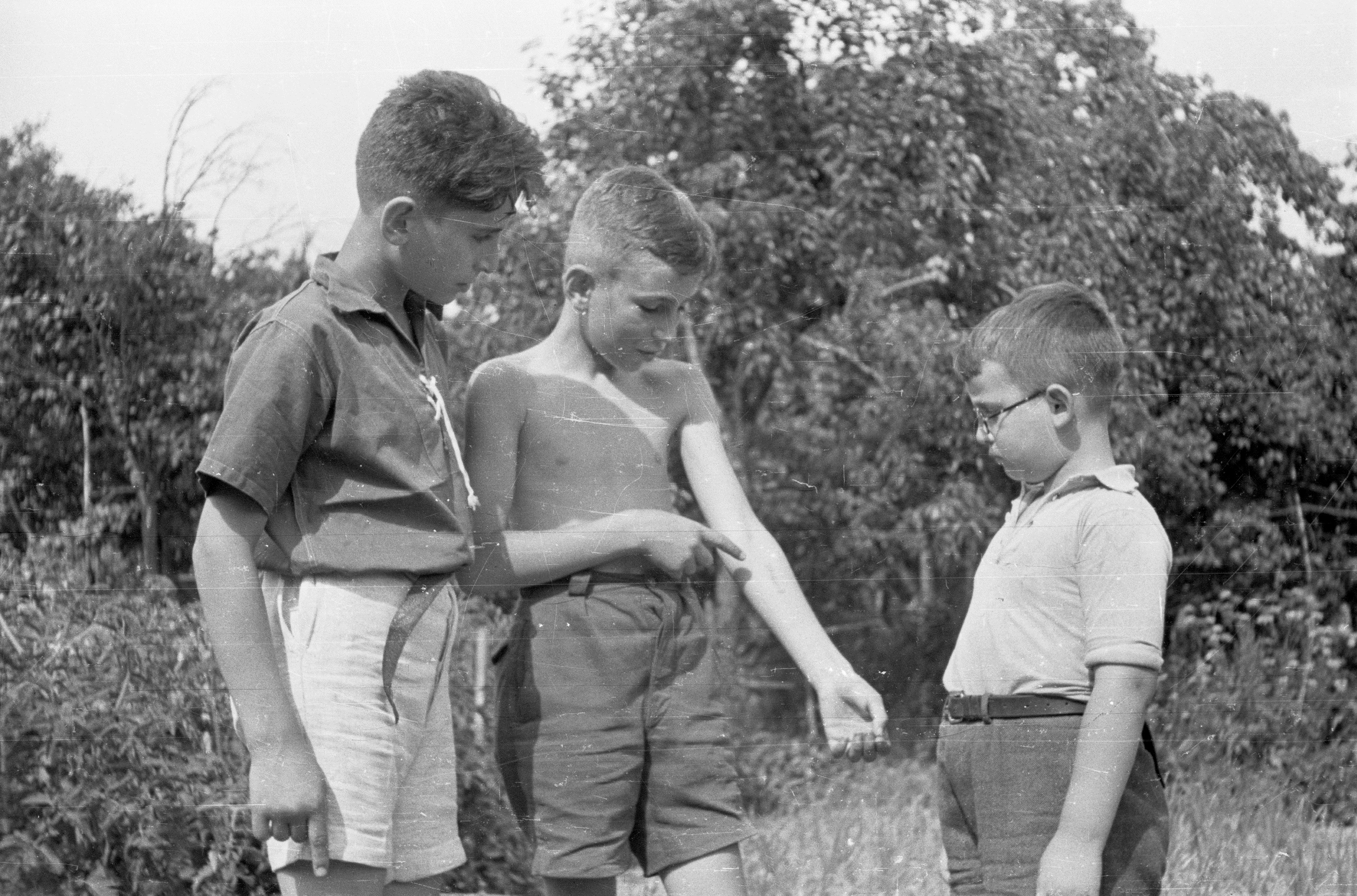Displaying concentration camp tattoo in a Joint-sponsored summer camp, Pieszce (Pietrolesie), Poland, 1947.