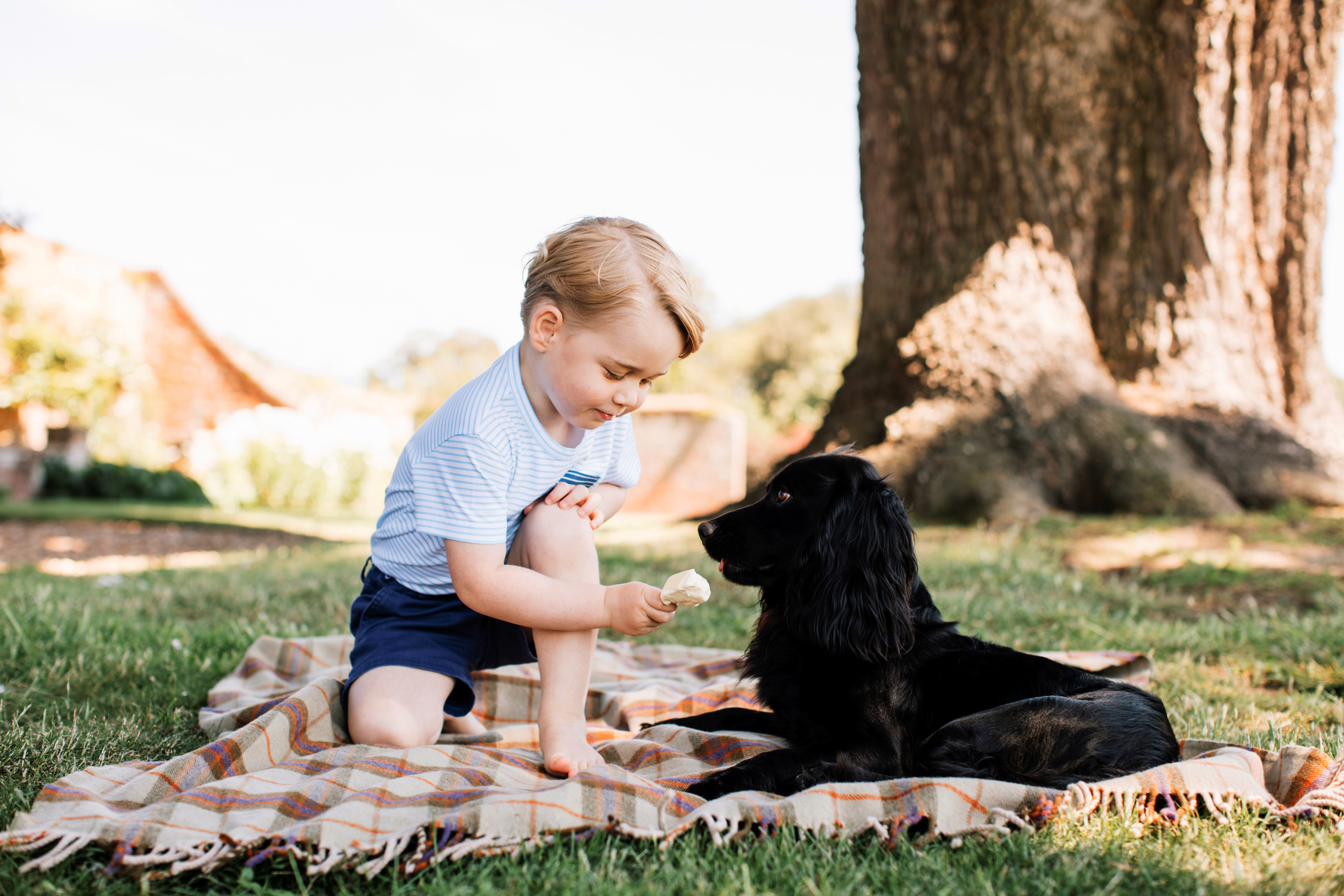 Britain's Prince George is seen with the family pet dog, Lupo, in this photograph taken in mid-July at his home in Norfolk and released by Kensington Palace to mark his third birthday, in London, July 22, 2016.