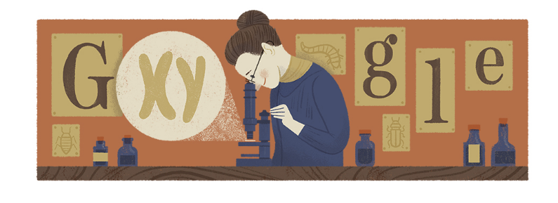 Google Doodle for Nettie Stevens' 155th Birthday.