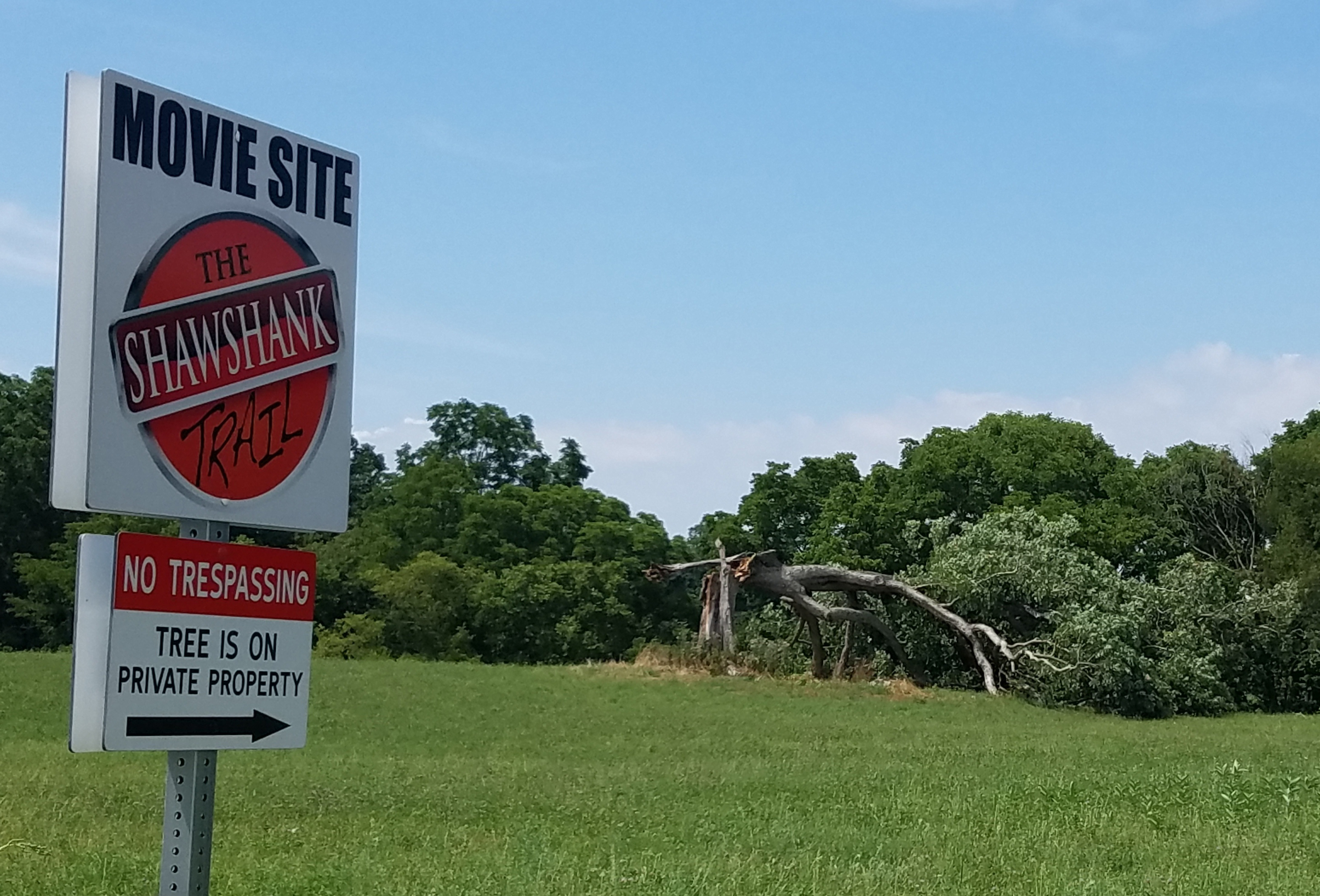 "A fallen oak tree made popular by its role in the movie ""The Shawshank Redemption,"" in Ohio, July 22, 2016."