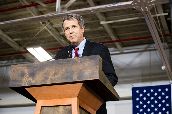 Sen. Sherrod Brown (D-OH) speaks at a campaign rally for Democratic presidential candidate Hillary Clinton on June 13, 2016 in Cleveland, Ohio.  Here, he's seen wearing his iconic canary in a cage lapel pin, which was given to him by Ohio steelworkers at a Workers' Memorial Day event in the 1990s.