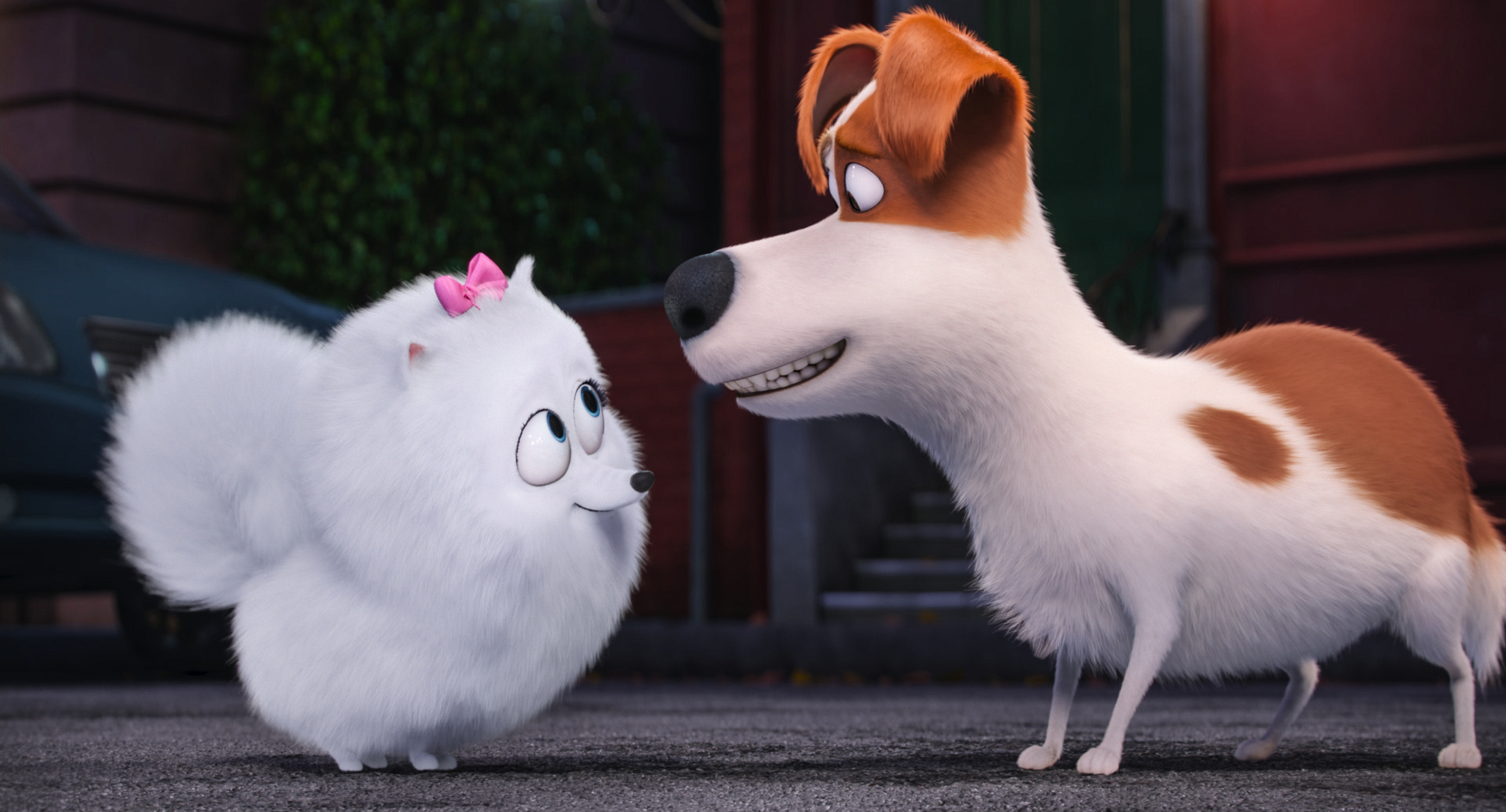 Gidget, voiced by Jenny Slate, left, and Max, voiced by Louis C.K., right, in The Secret Lives of Pets.
