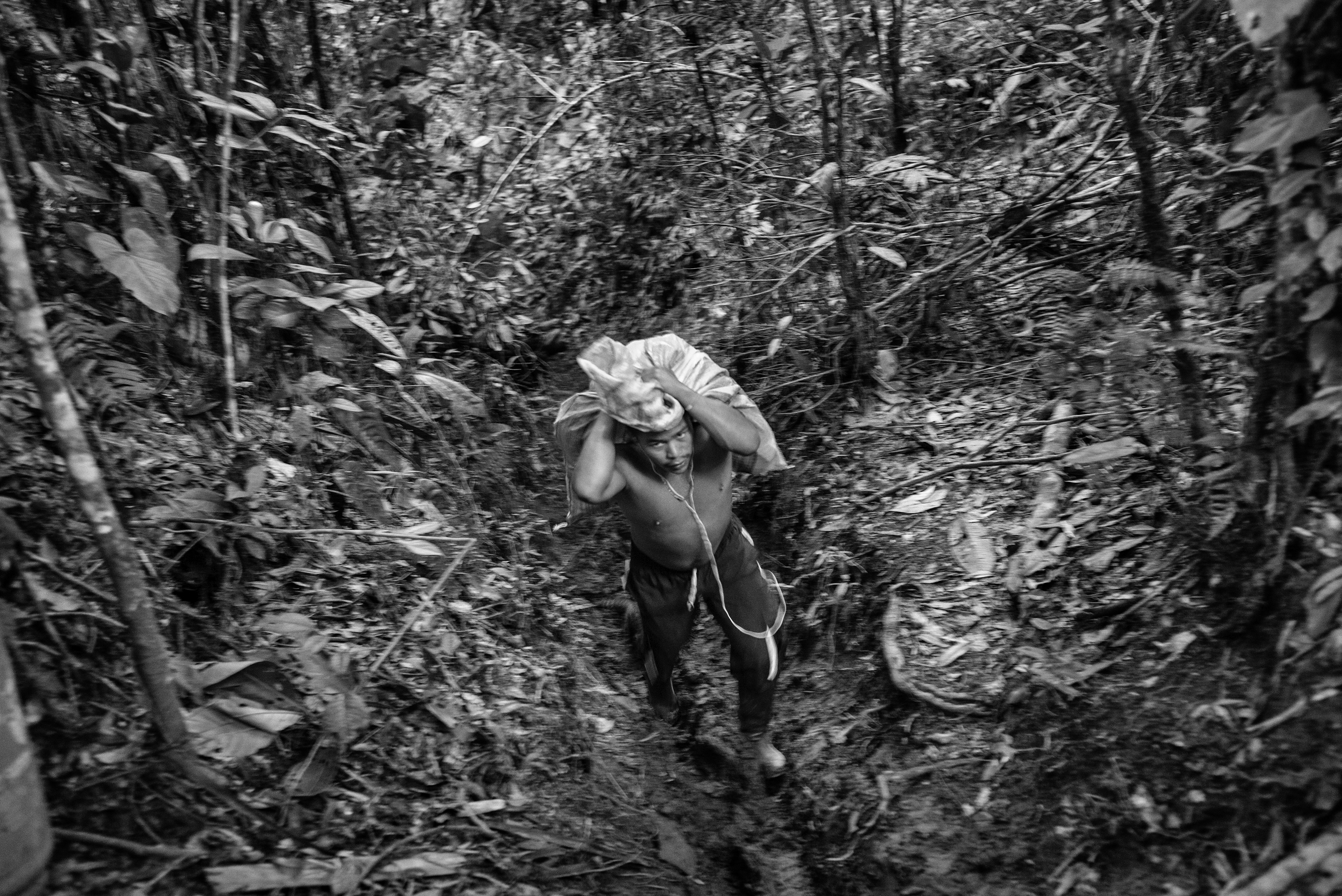 A guerrilla member of the FARC carries supplies to a camp, Cauca, Colombia, July 2016.
