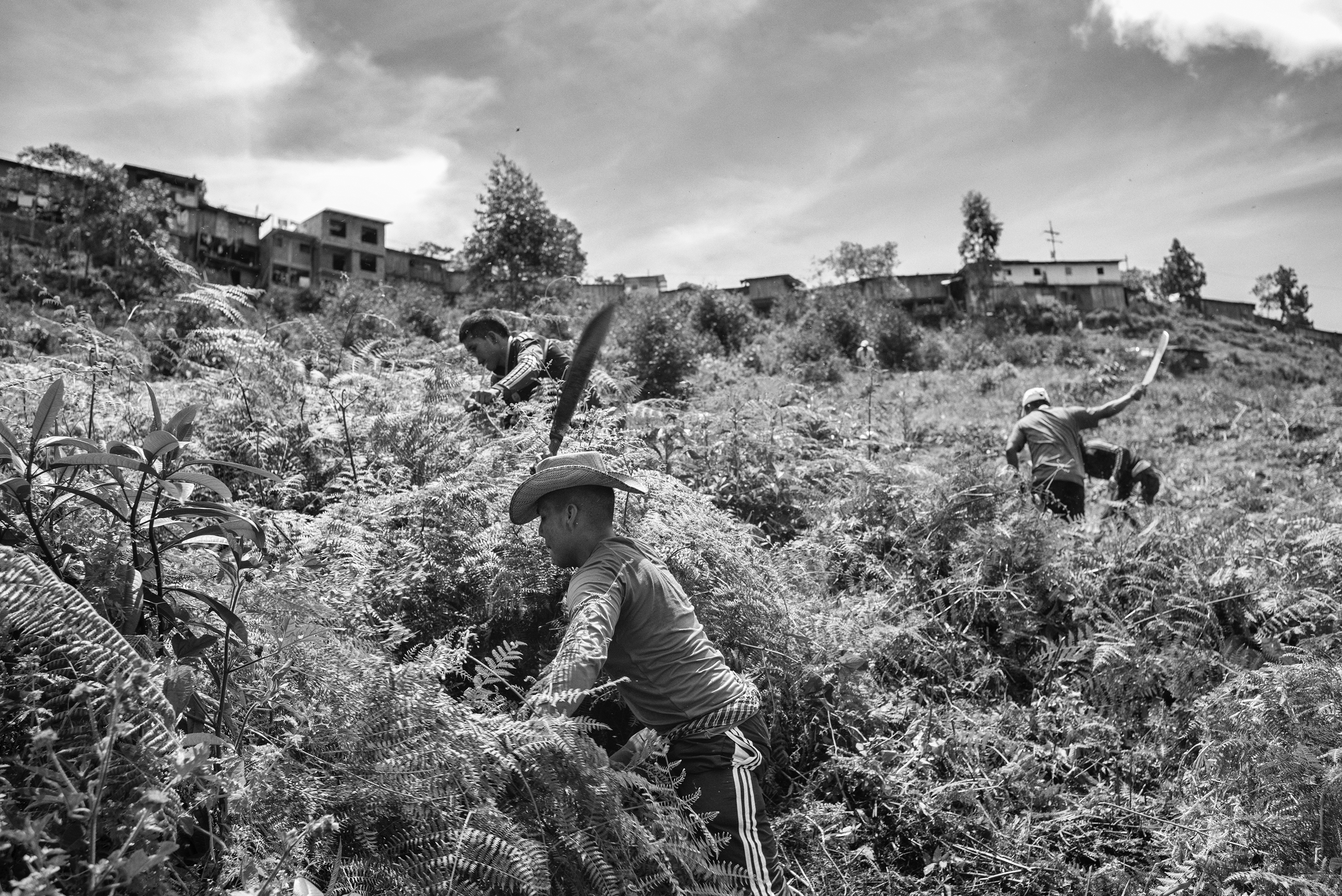 A group of FARC guerrillas and civilians perform community work in the community Robles Cauca, Colombia, July 2016. Many regions in  Colombia have lived for  52 years under the control of FARC as the only authority. The peace agreement reached Aug. 24, 2016,  has raised doubts and fears among civilians about the future that awaits their communities neglected by the state.