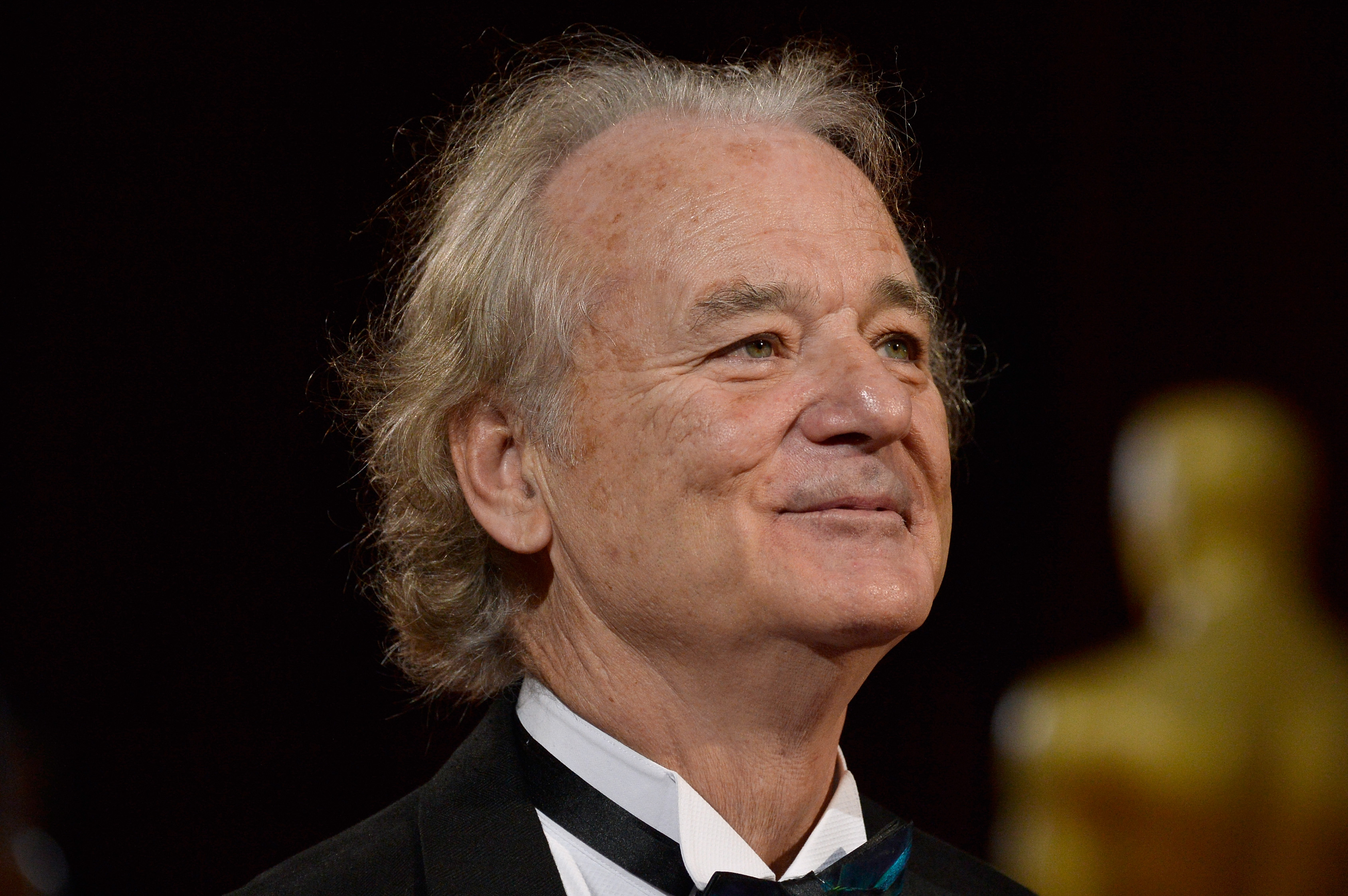 Actor Bill Murray attends the Oscars held at Hollywood & Highland Center on March 2, 2014 in Hollywood, California.