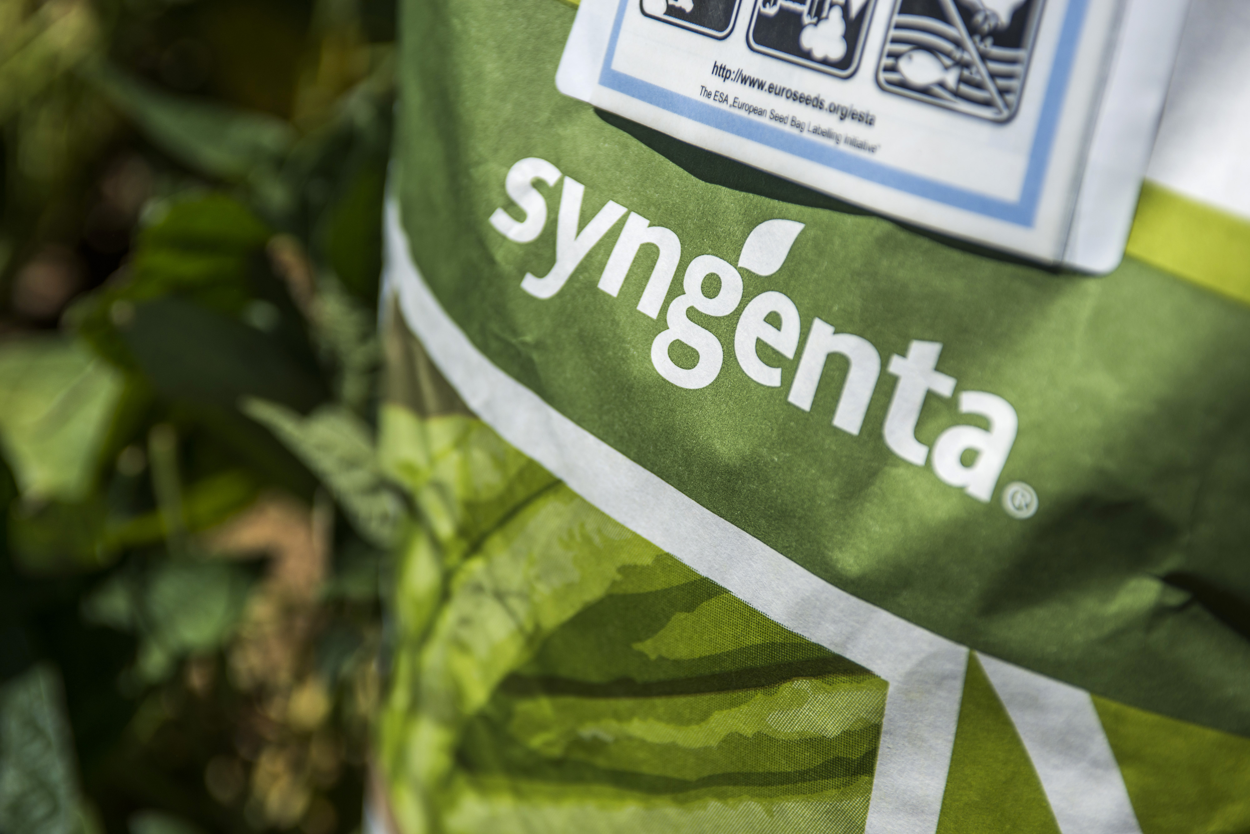 A sack of Syngenta AG bean seeds on a farmer's field near Johannesburg on Feb. 4, 2016