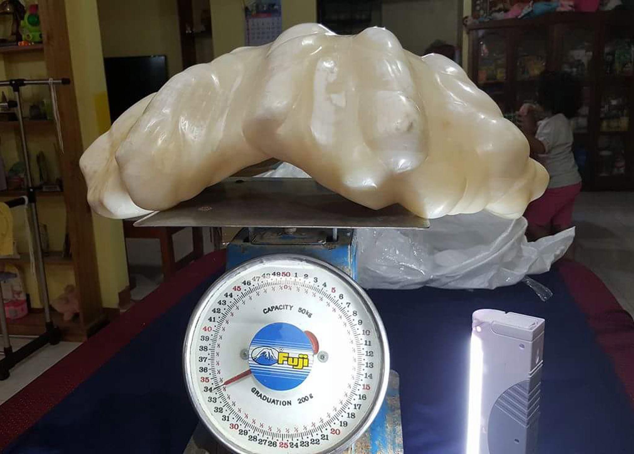 Handout photo provided by the Puerto Princesa Tourism Office released on Aug. 23, 2016 shows a pearl that is awaiting to be certified as the biggest in the world, in Puerto Princesa, Palawan island, Philippines.