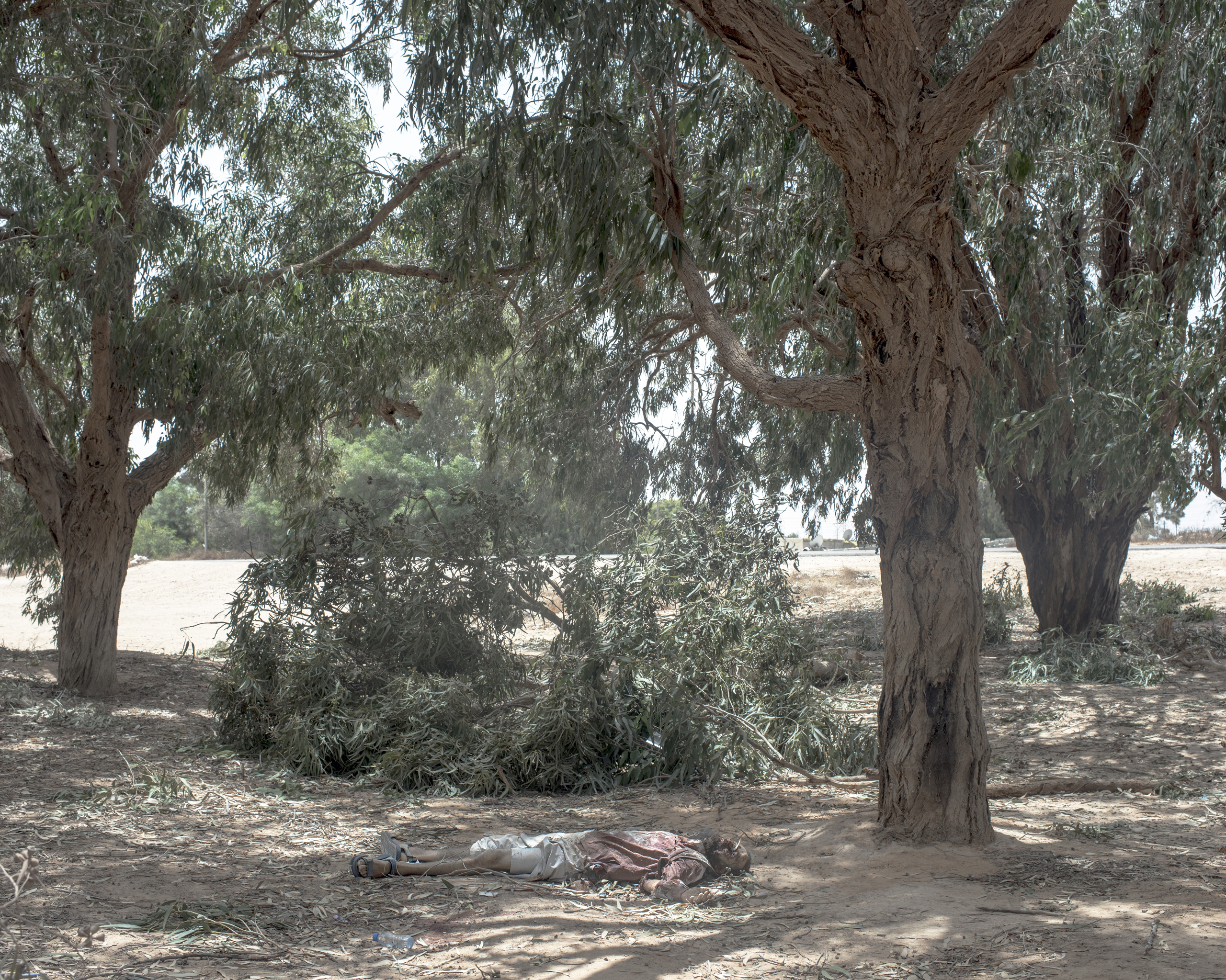 The corpse of a slain ISIS fighter lies beneath a eucalyptus trees in Sirt,  Libya, July, 2016