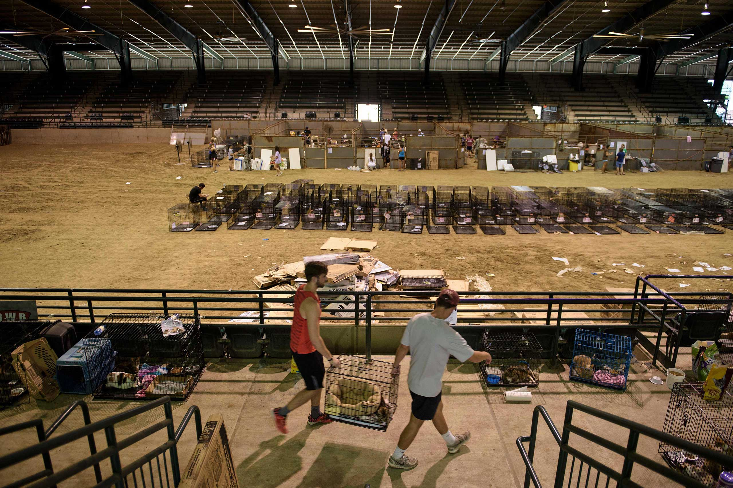 Volunteers move cages at a temporary animal shelter inside the Lamar Dixon Expo Center near a flood victims' shelter after flooding in Gonzales, La., on Aug. 16, 2016.