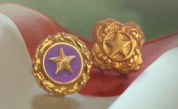 Gold Star pins, worn by close relatives of those who have died in war.