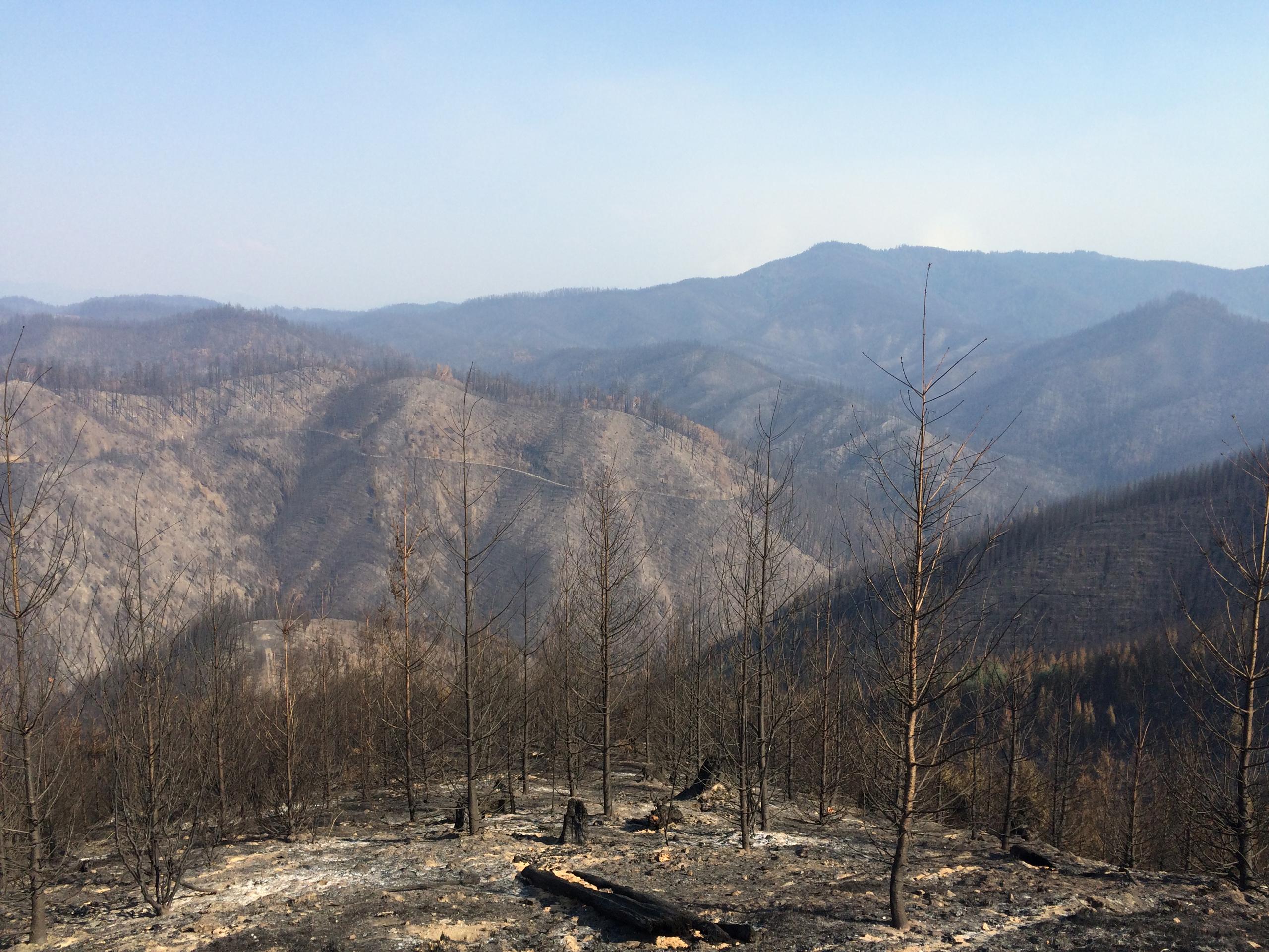 The Stouts Creek Fire