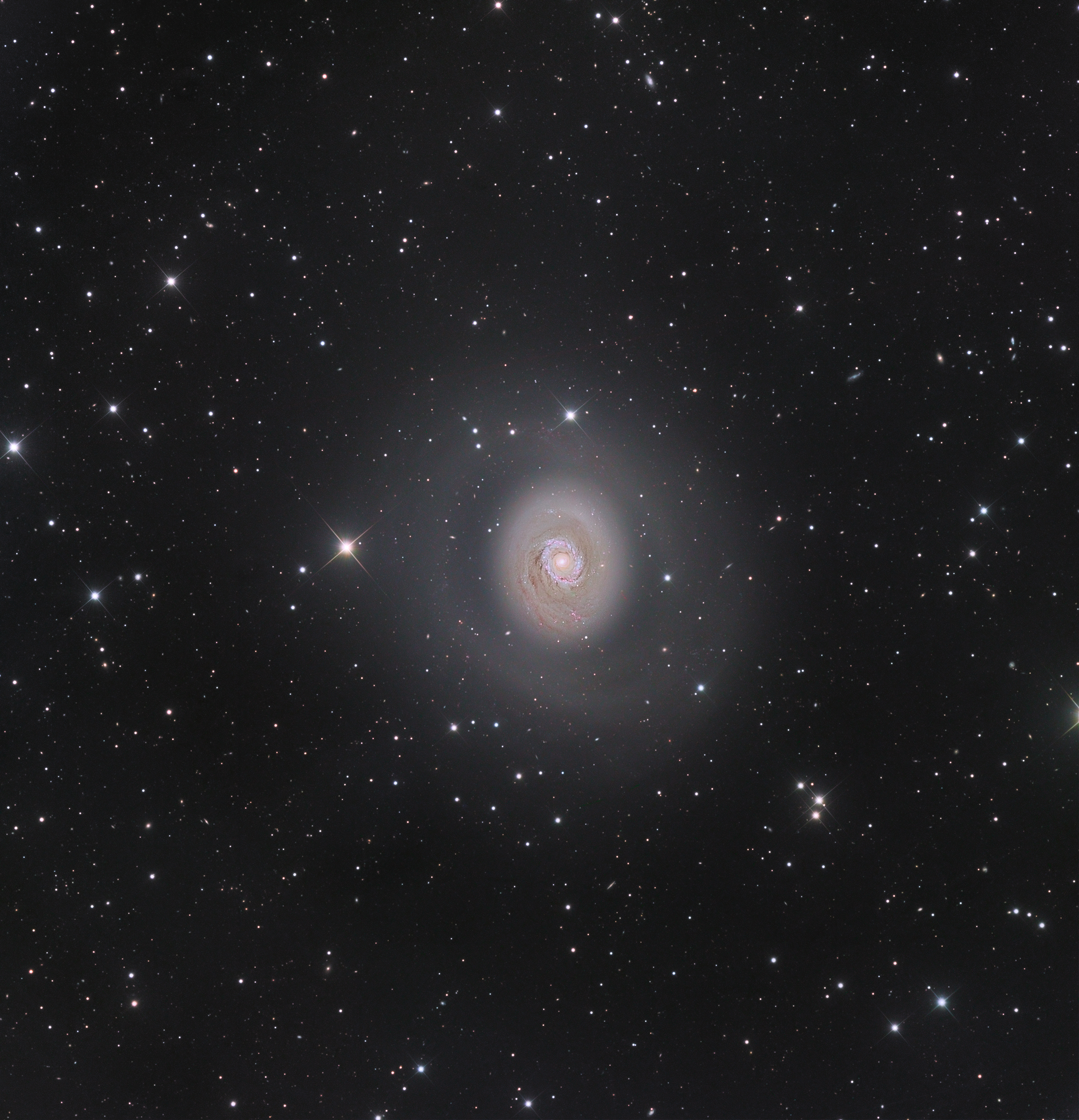 Galaxies:Nicolas set himself up for a challenge at the Castor Sirene Observatory in Provence-Alpes-Côte d'Azur, France, while trying to capture, not only the M94 galaxy, but also all the smaller galaxies in the background. His efforts paid off, with this winning image.