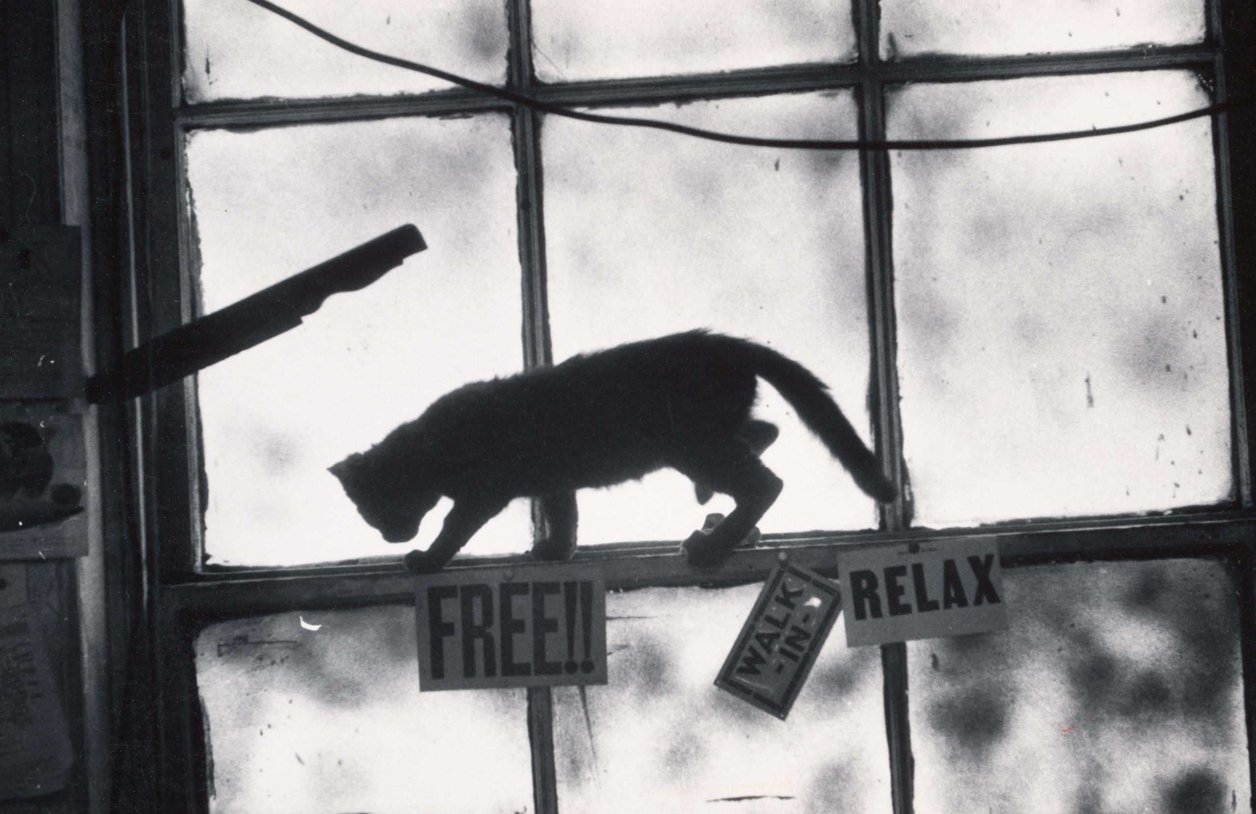 The Loft window, c. 1957-1964.