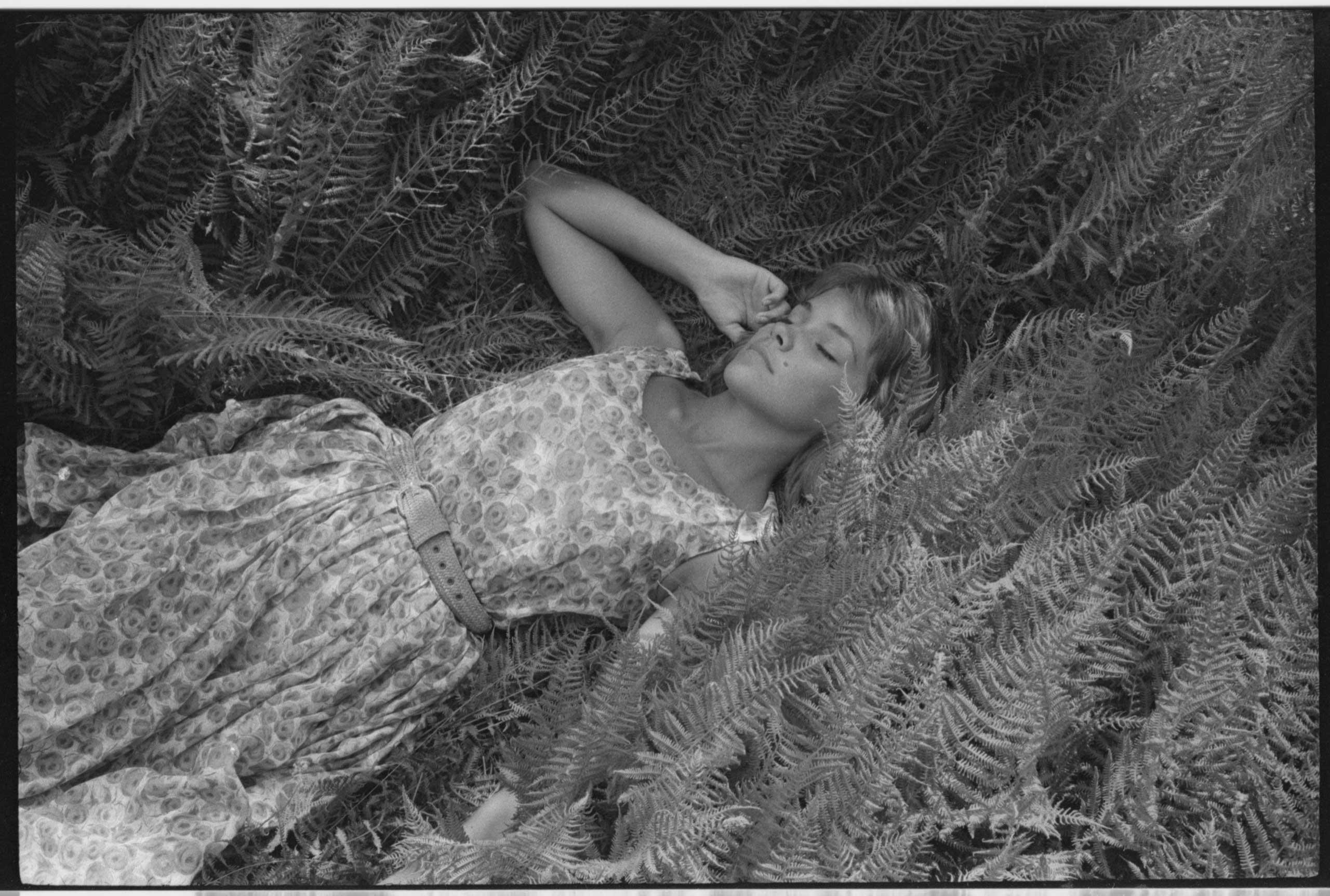 A fashion model lying on ferns on ground.