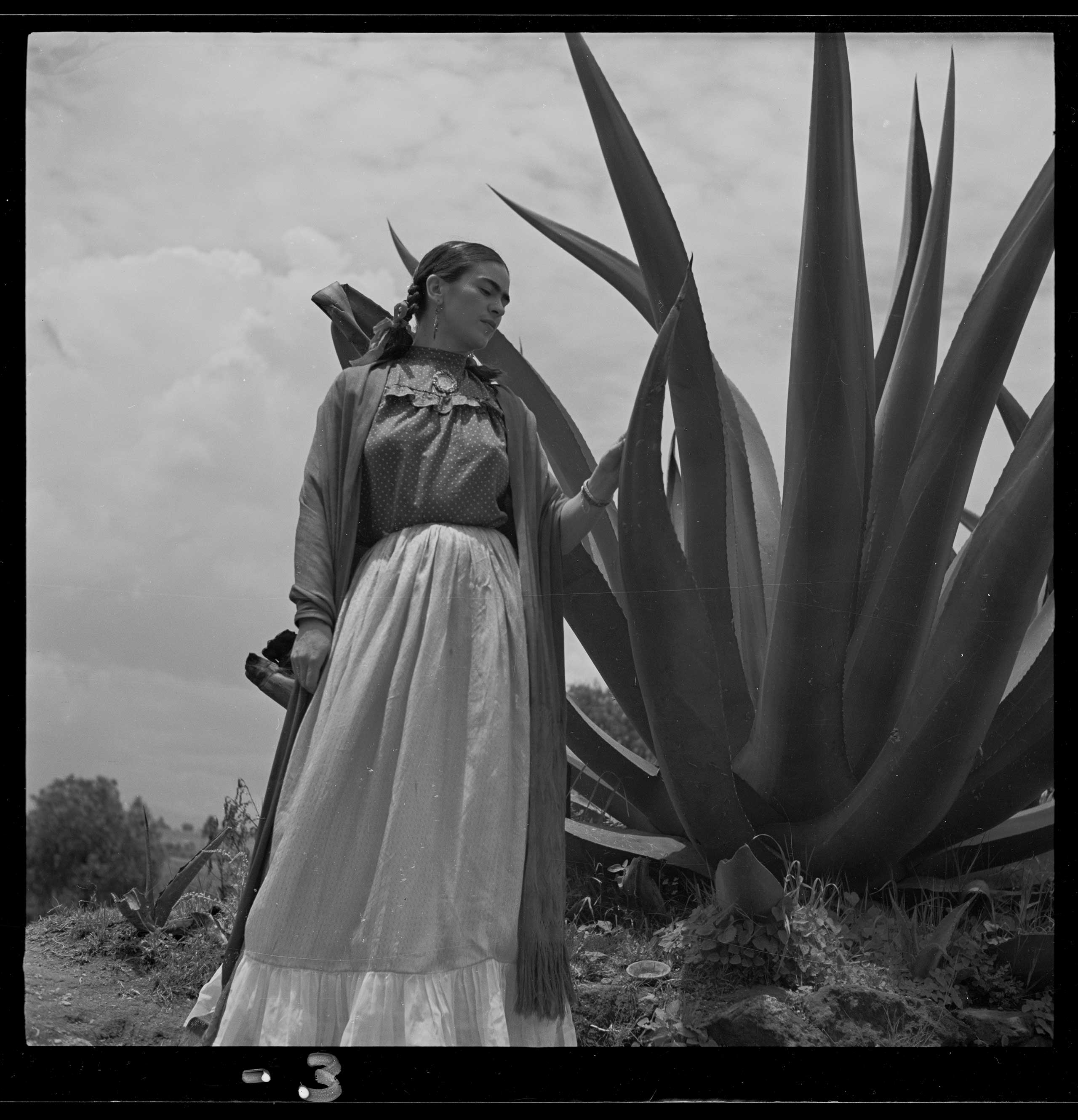 Frida Kahlo (Senora Diego Rivera) standing next to an agave plant, during a photo shoot for Vogue magazine,  Senoras of Mexico .