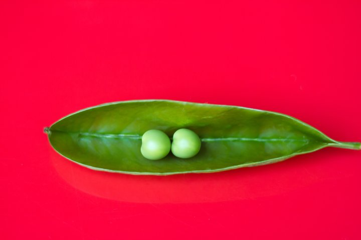 Two Perfect Peas in a Pod, Vibrant Red Background