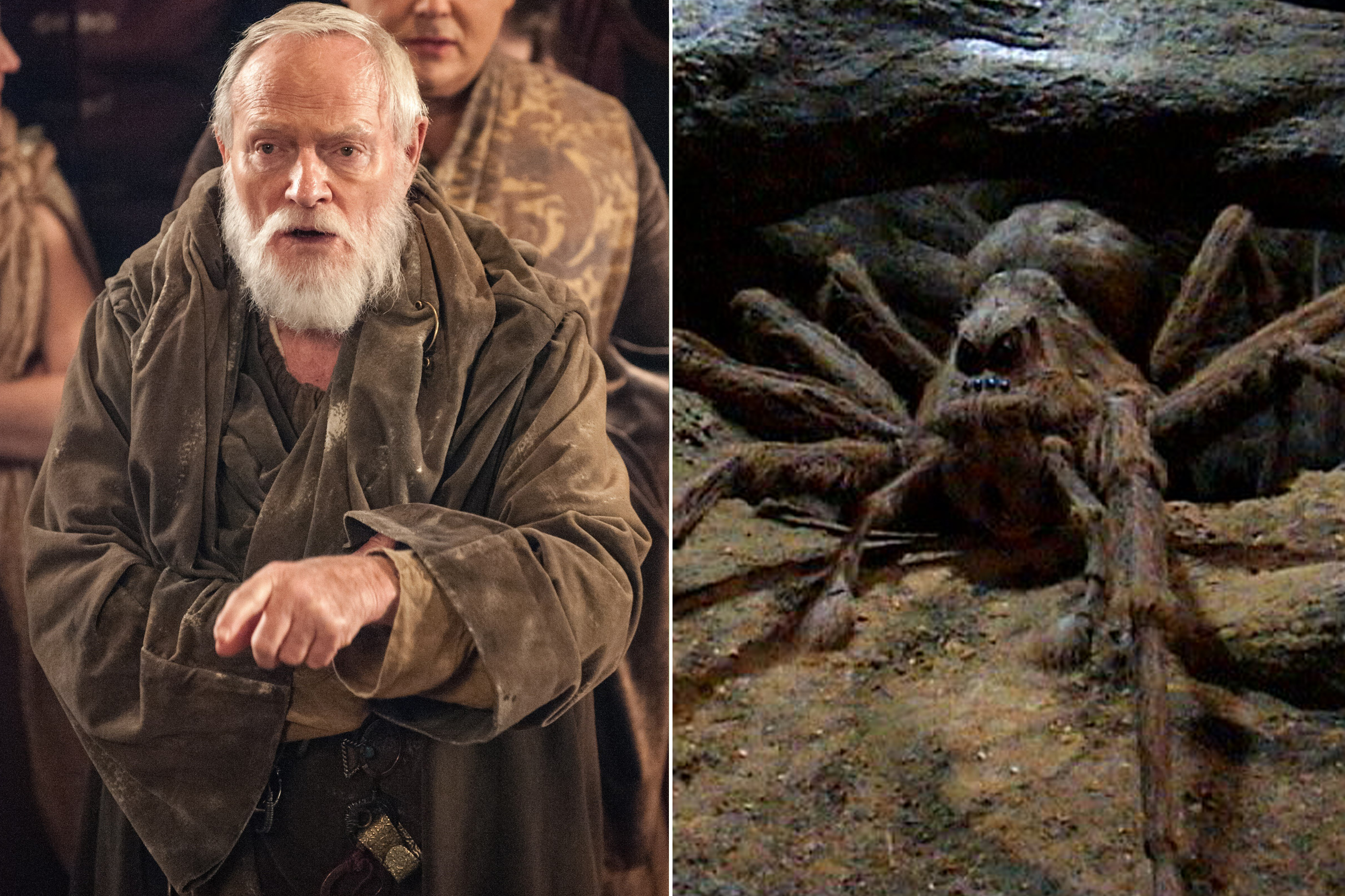 Julian Glover as Grand Maester Pycelle and the voice of Aragog