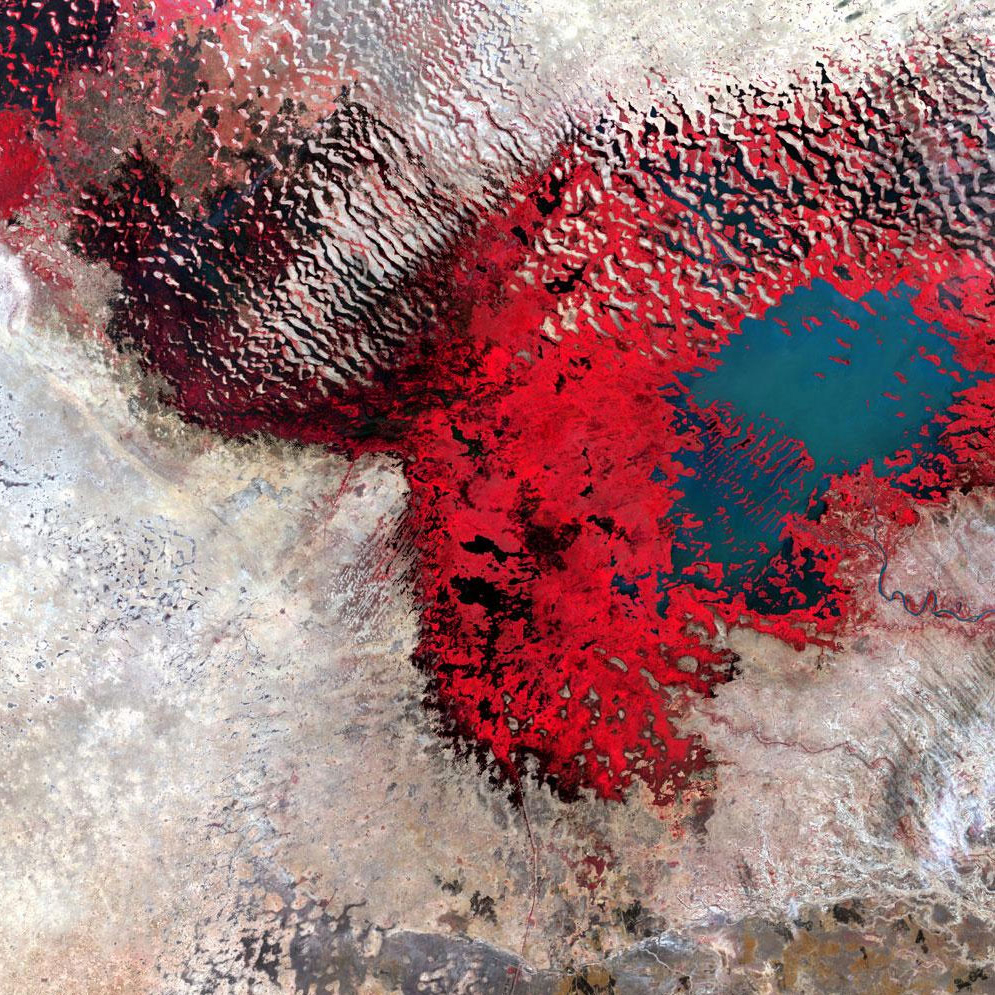 Lake Chad, Africa                               Infrared reveals the extent to which this lake has shrunk over the decades. As the water becomes more shallow, wetlands, shown here in red, replace open water. Dec. 18, 2002.