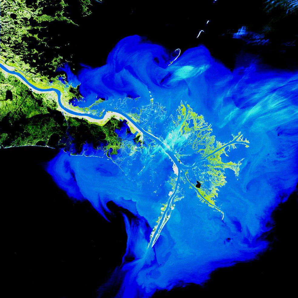 Mississippi Delta, USALandsat has been observing the birdsfoot delta of the Mississippi River, which collects eroded debris from the entire central half of the United States, for more than three decades. March 12, 1989.