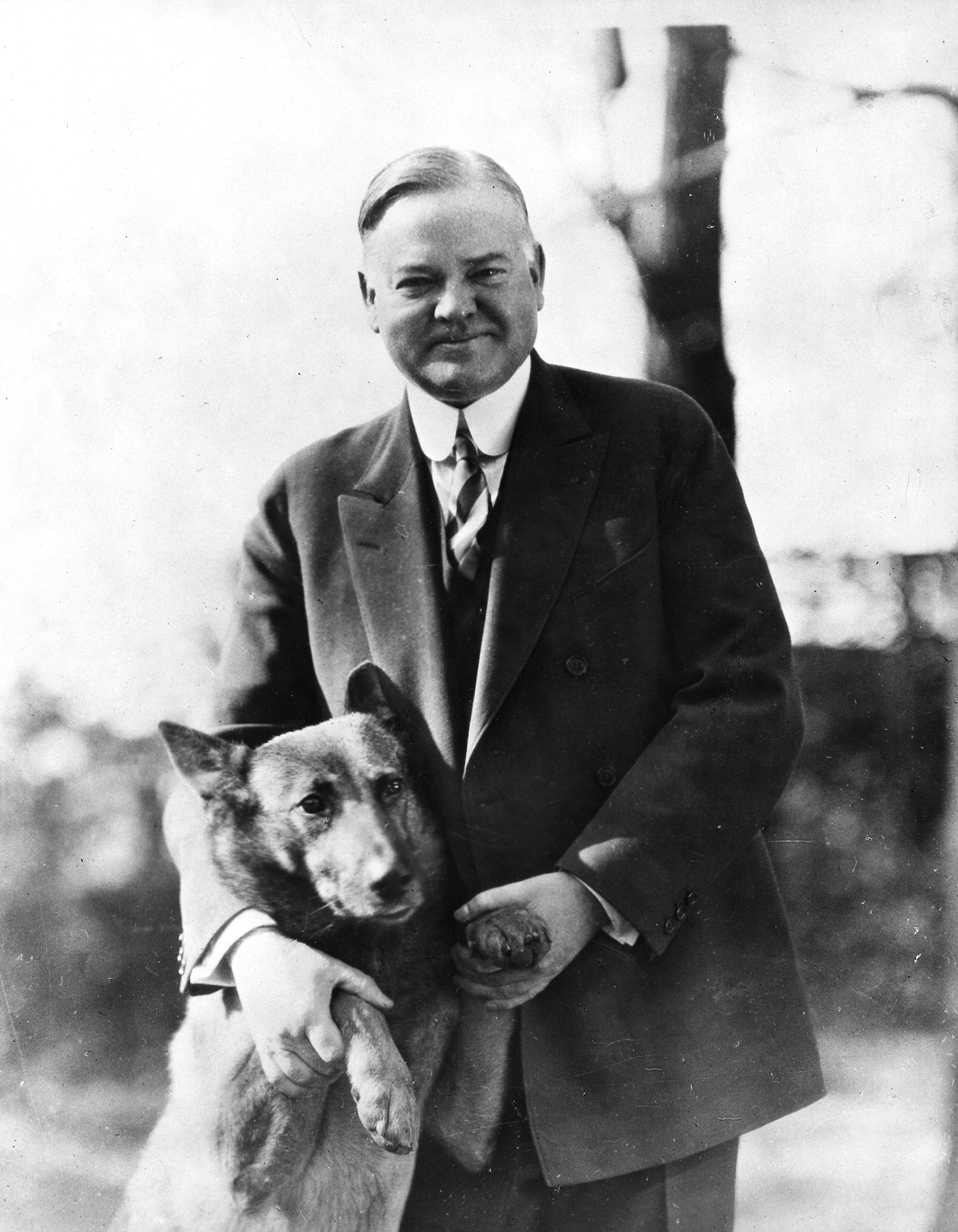 Herbert Hoover poses with his pet dog, King Tut, in the 1930s.