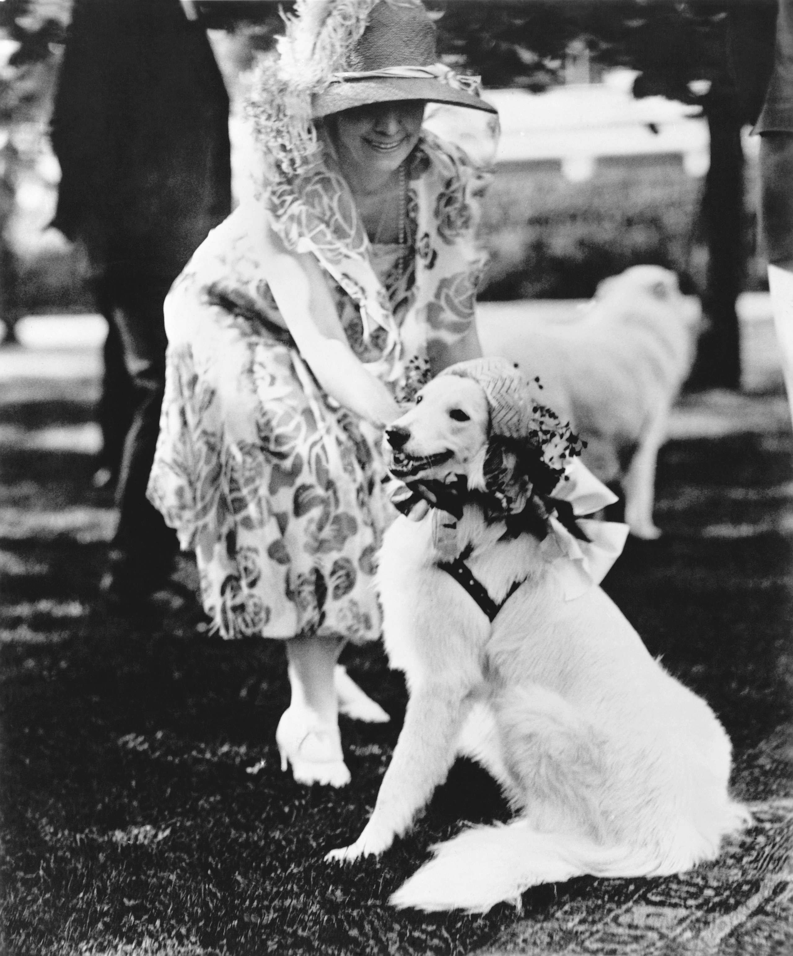 First Lady, Grace Coolidge, dresses up her white collie, Rob Roy, in a bonnet for a White House garden party, June 1, 1926.